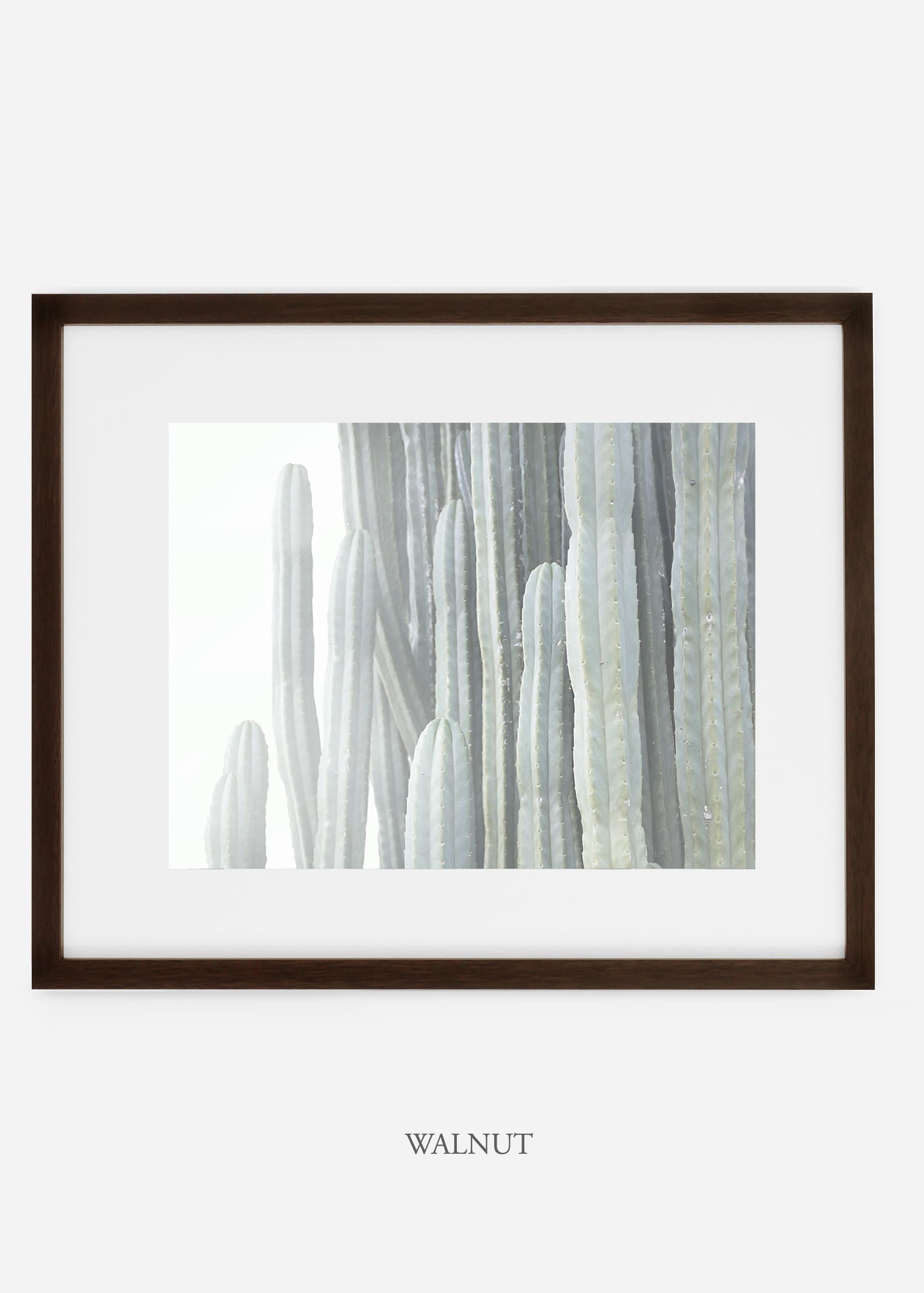 WilderCalifornia_walnutframe__Cactus_Art_Photography_interiordesign_white_bohemian_neutral_photography_photo.jpg