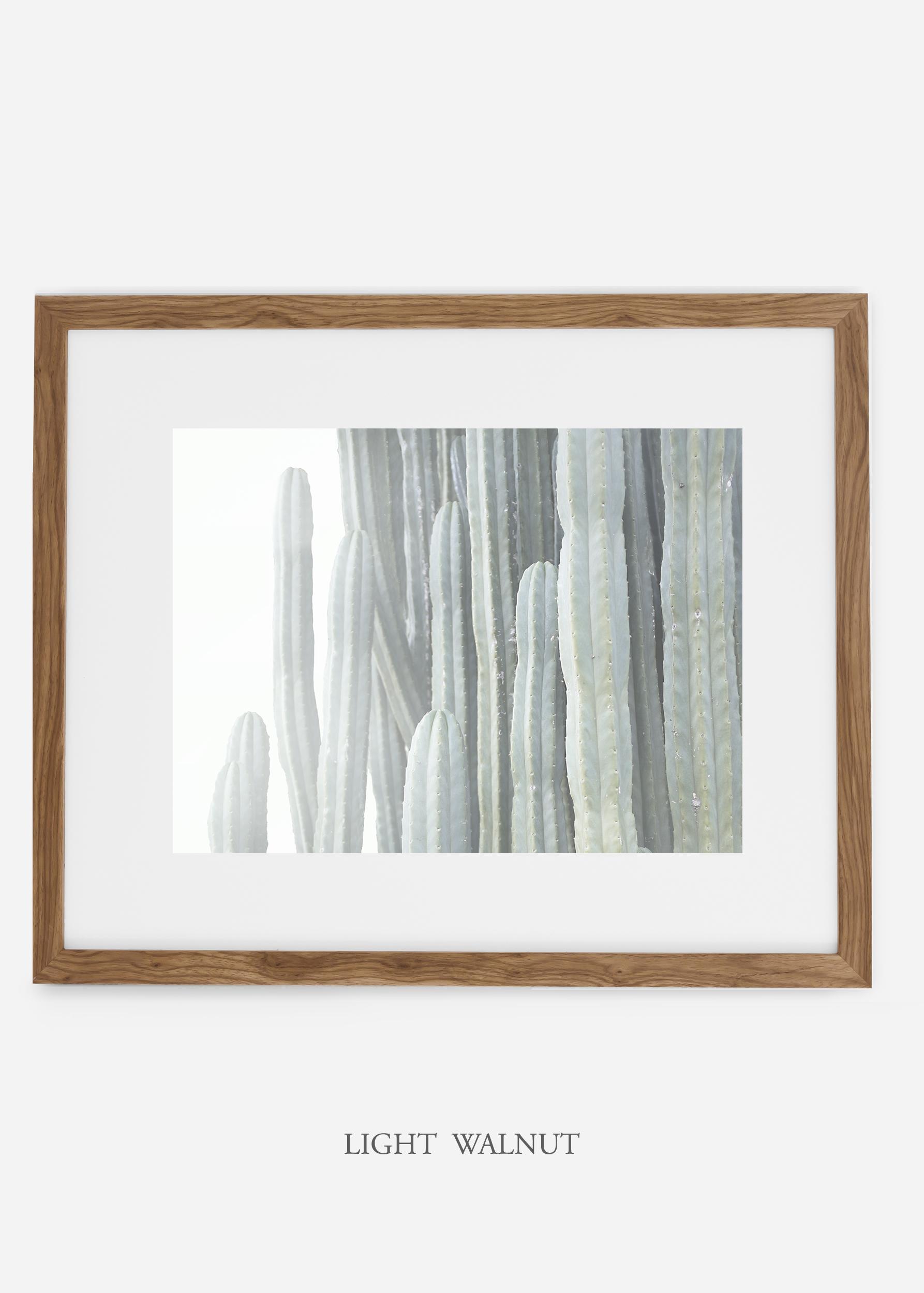 WilderCalifornia_lightwalnutframe__Cactus_Art_Photography_interiordesign_white_bohemian_neutral_photography_photo.jpg