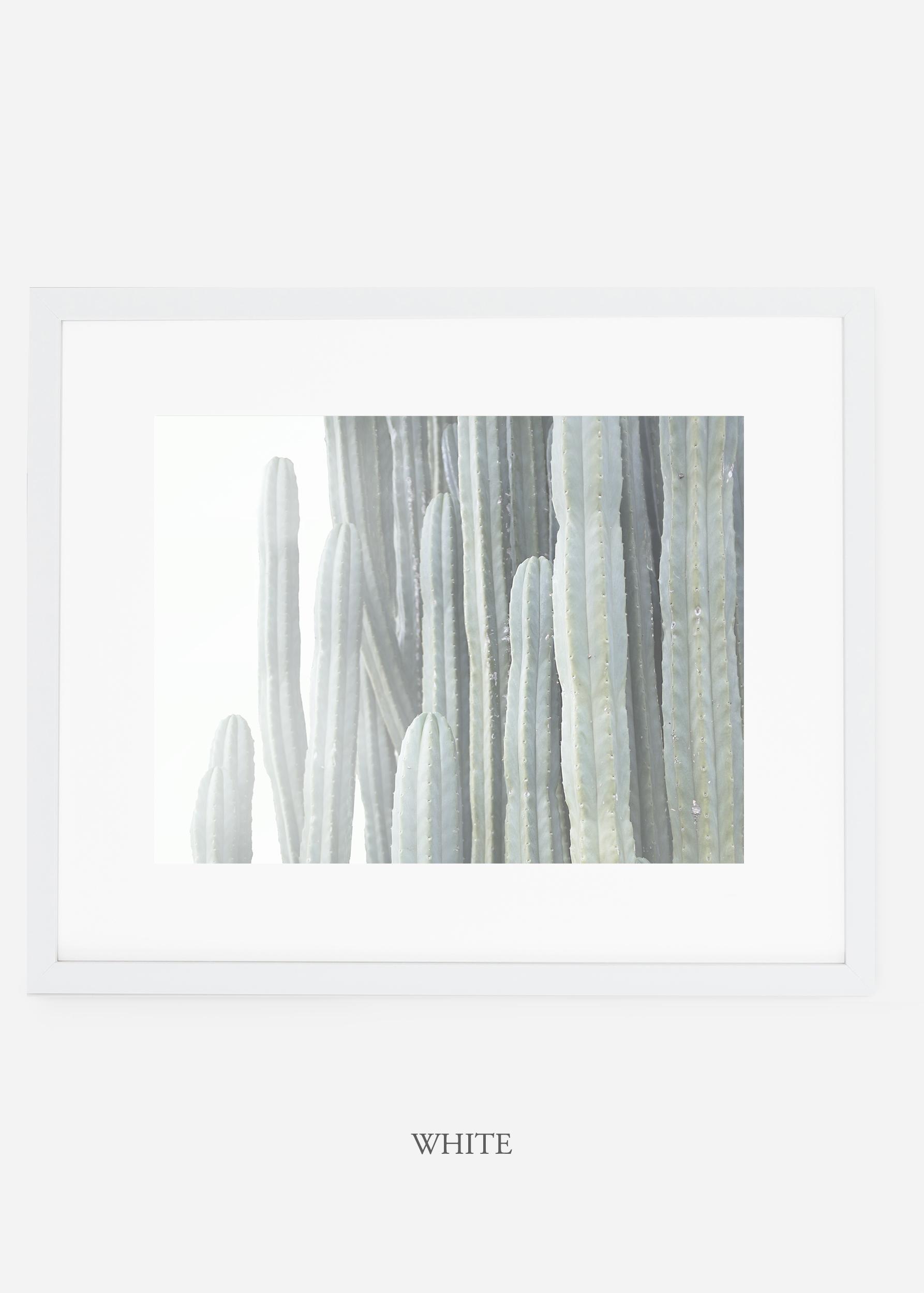 WilderCalifornia_whiteframe__Cactus_Art_Photography_interiordesign_white_bohemian_neutral_photography_photo.jpg