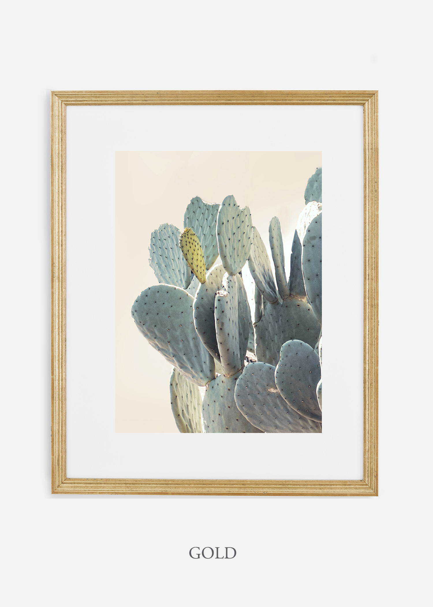 Desert_goldframe_DesertDetails_Cactus__Art_Photography_interiordesign_bohemian_cactusart.jpg