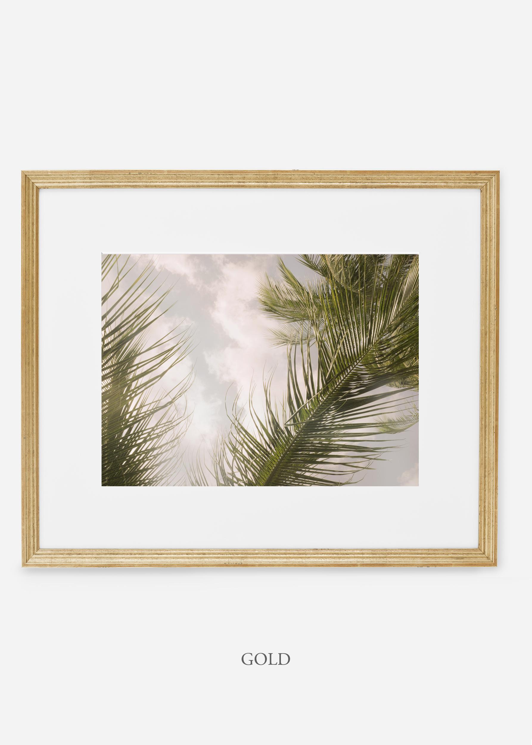 interiordesign_goldframe_AiryPalmTreeNo.1_art_tropical_palmtree_StormyGrayPalm.jpg