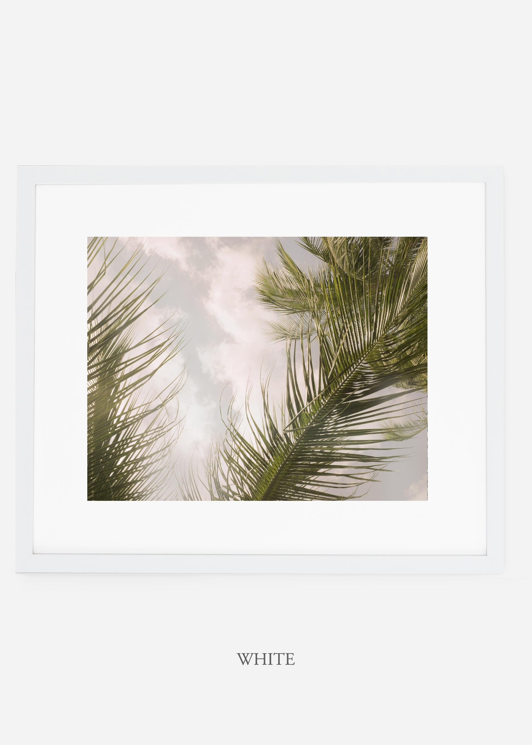 interiordesign_whiteframe_AiryPalmTreeNo.1_art_tropical_palmtree_StormyGrayPalm.jpg