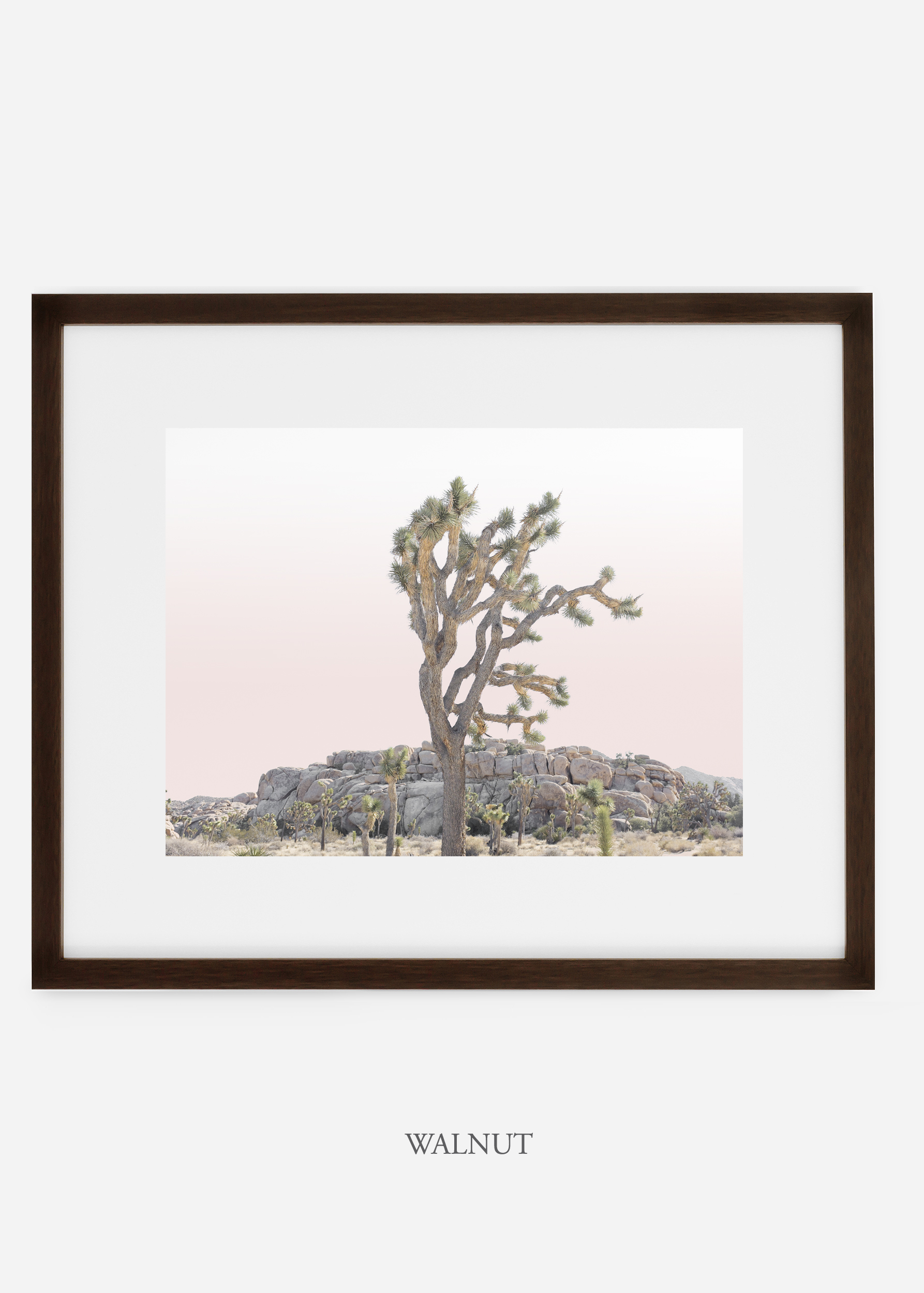 JoshuaTree_walnutframe_No.8_interiordesign_cactusprint_art.jpg