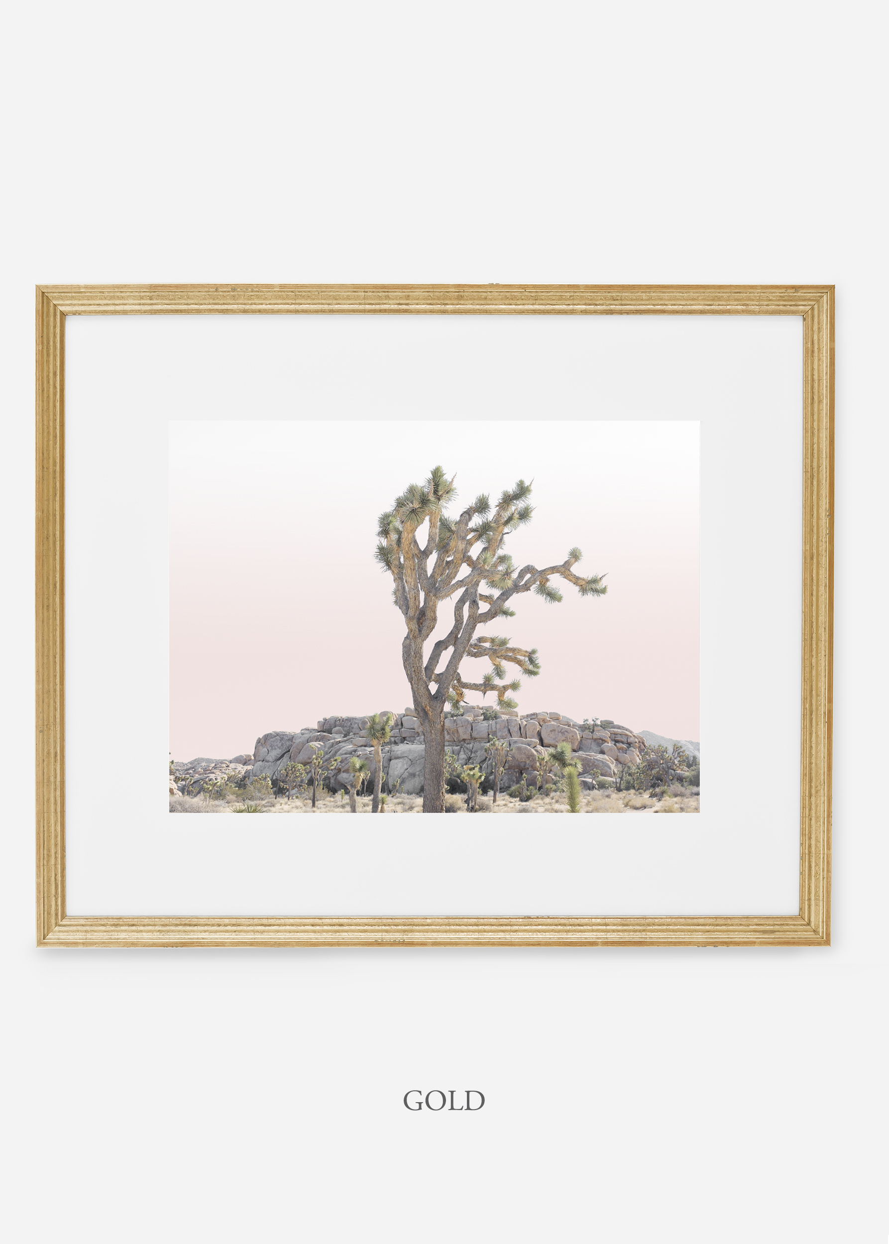 JoshuaTree_goldframe_No.8_interiordesign_cactusprint_art.jpg