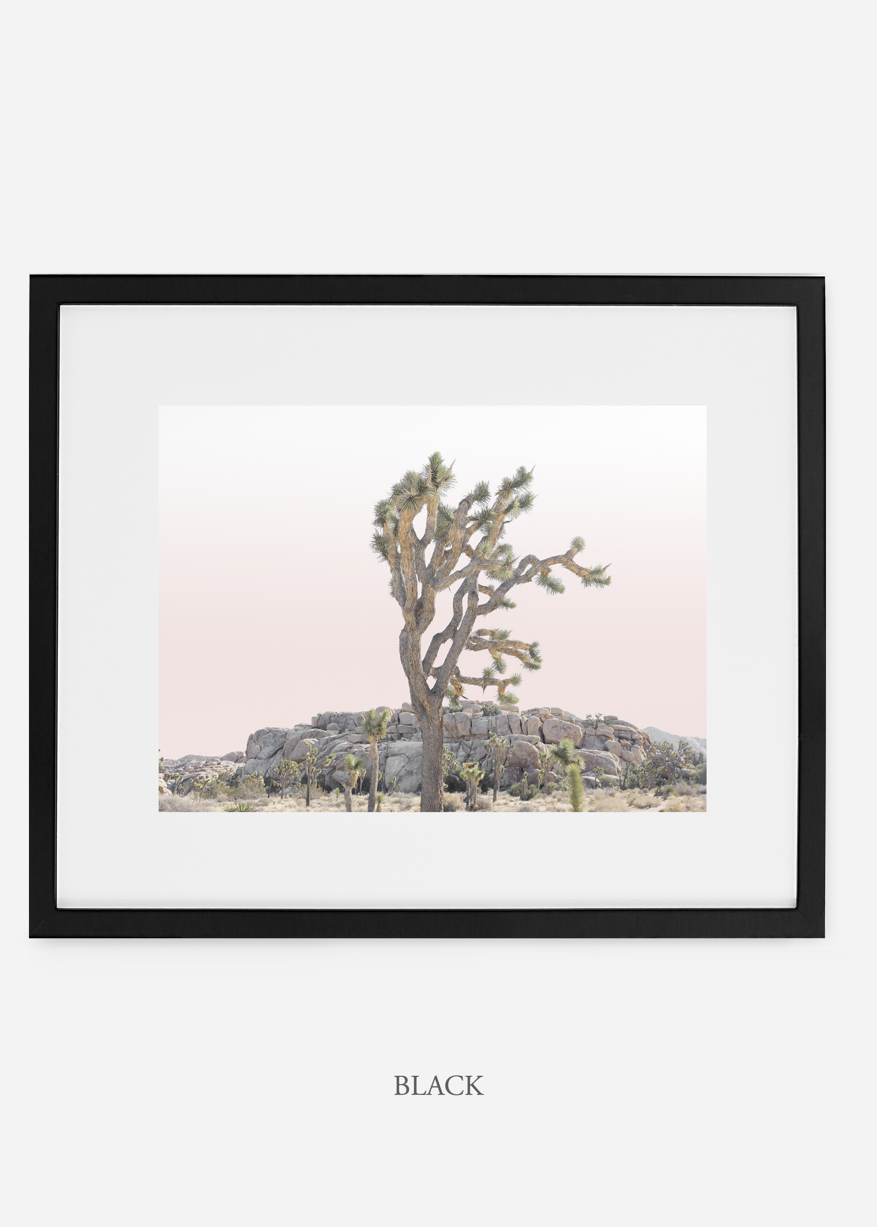 JoshuaTree_blackframe_No.8_interiordesign_cactusprint_art.jpg