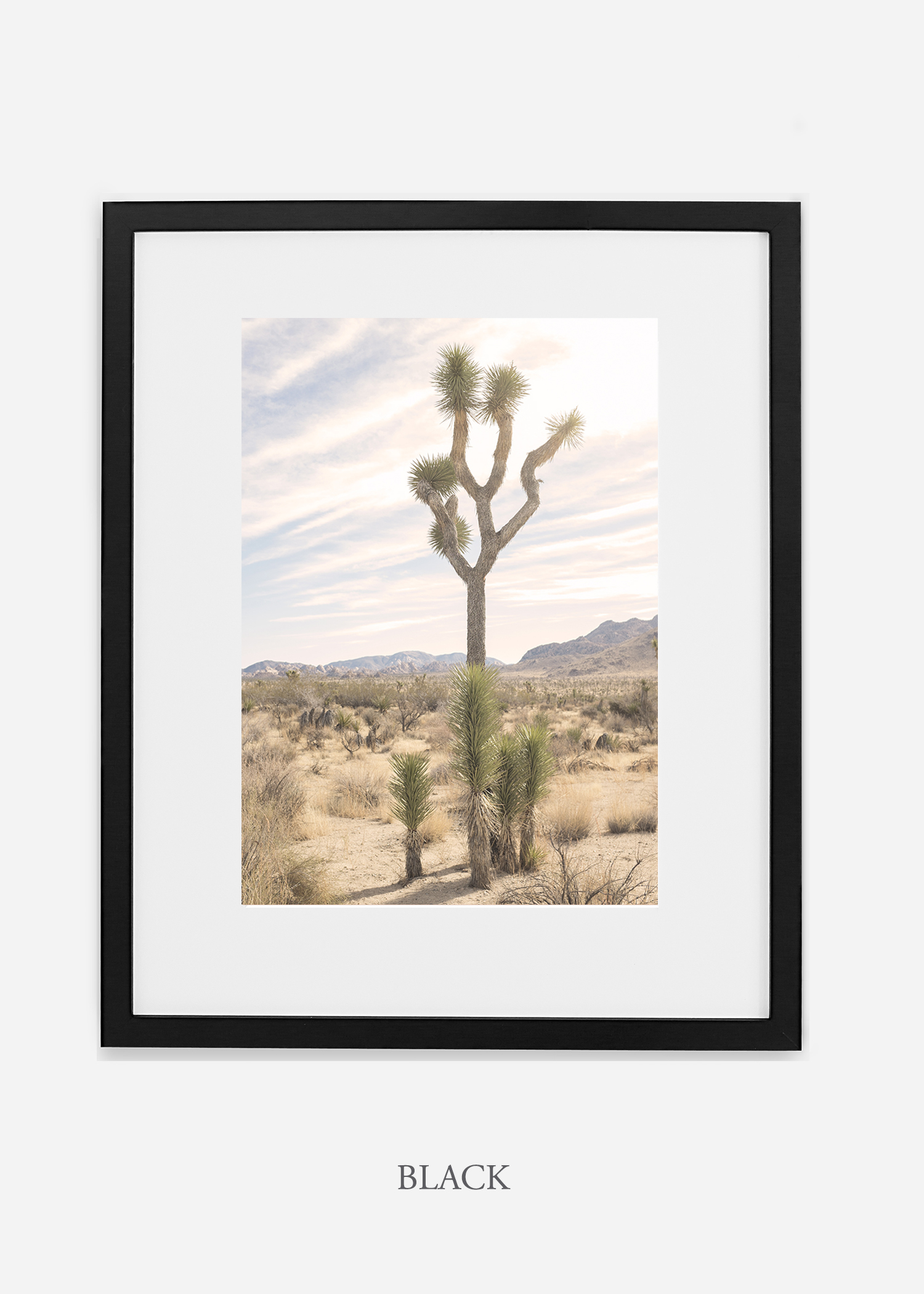 JoshuaTree_blackframe__No.7_interiordesign_cactusprint_art.jpg