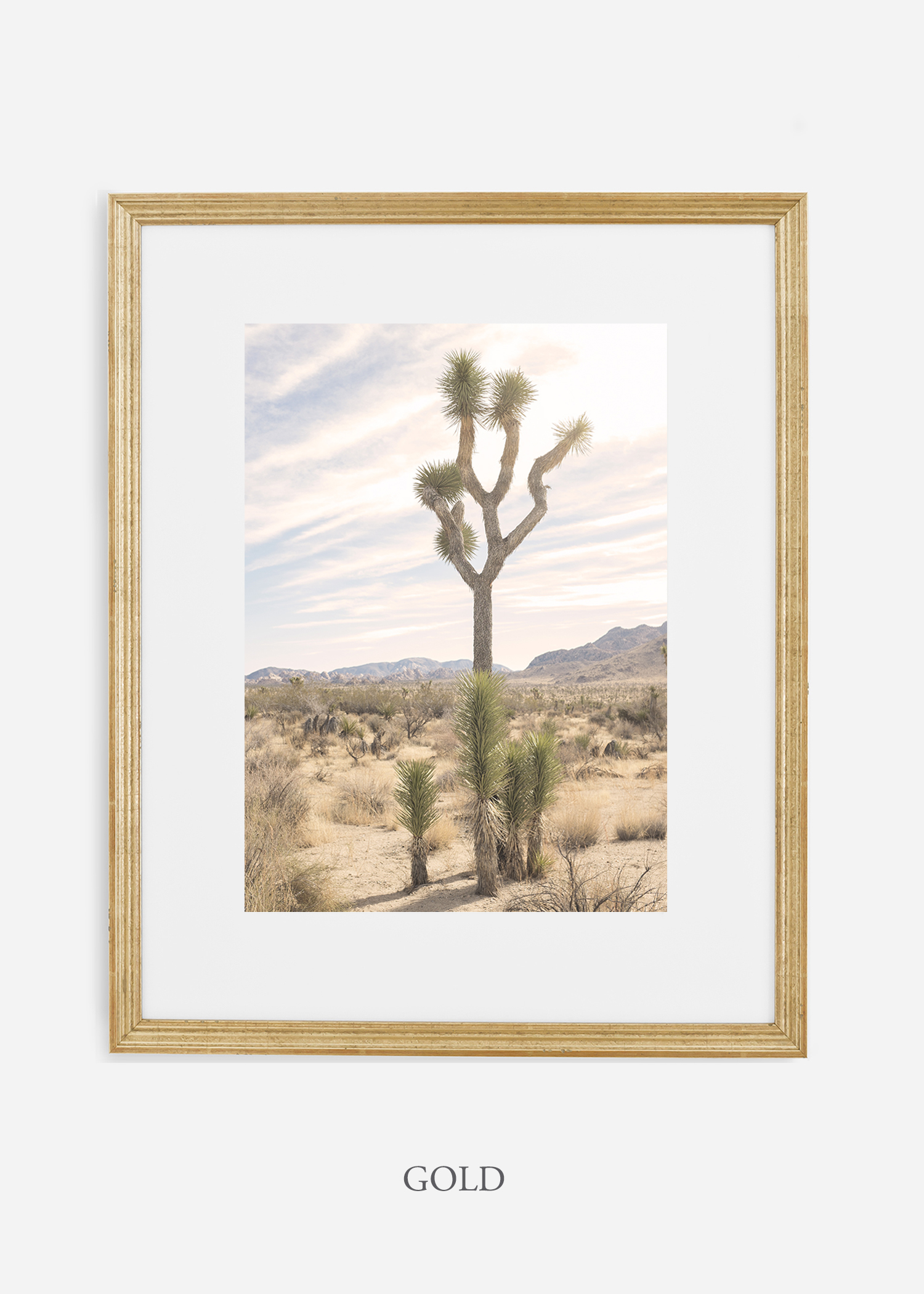 JoshuaTree_goldframe__No.7_interiordesign_cactusprint_art.jpg