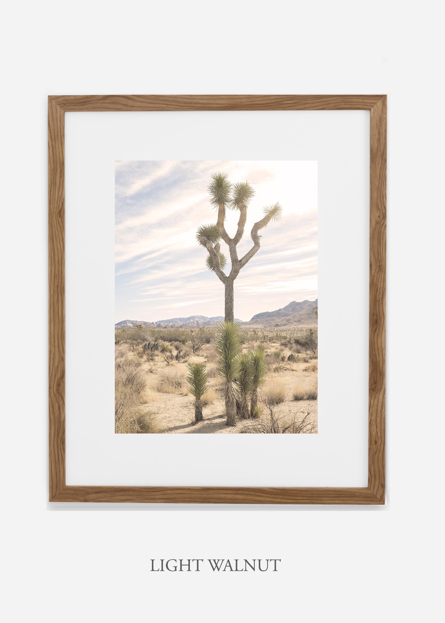 JoshuaTree_lightwalnutframe__No.7_interiordesign_cactusprint_art.jpg