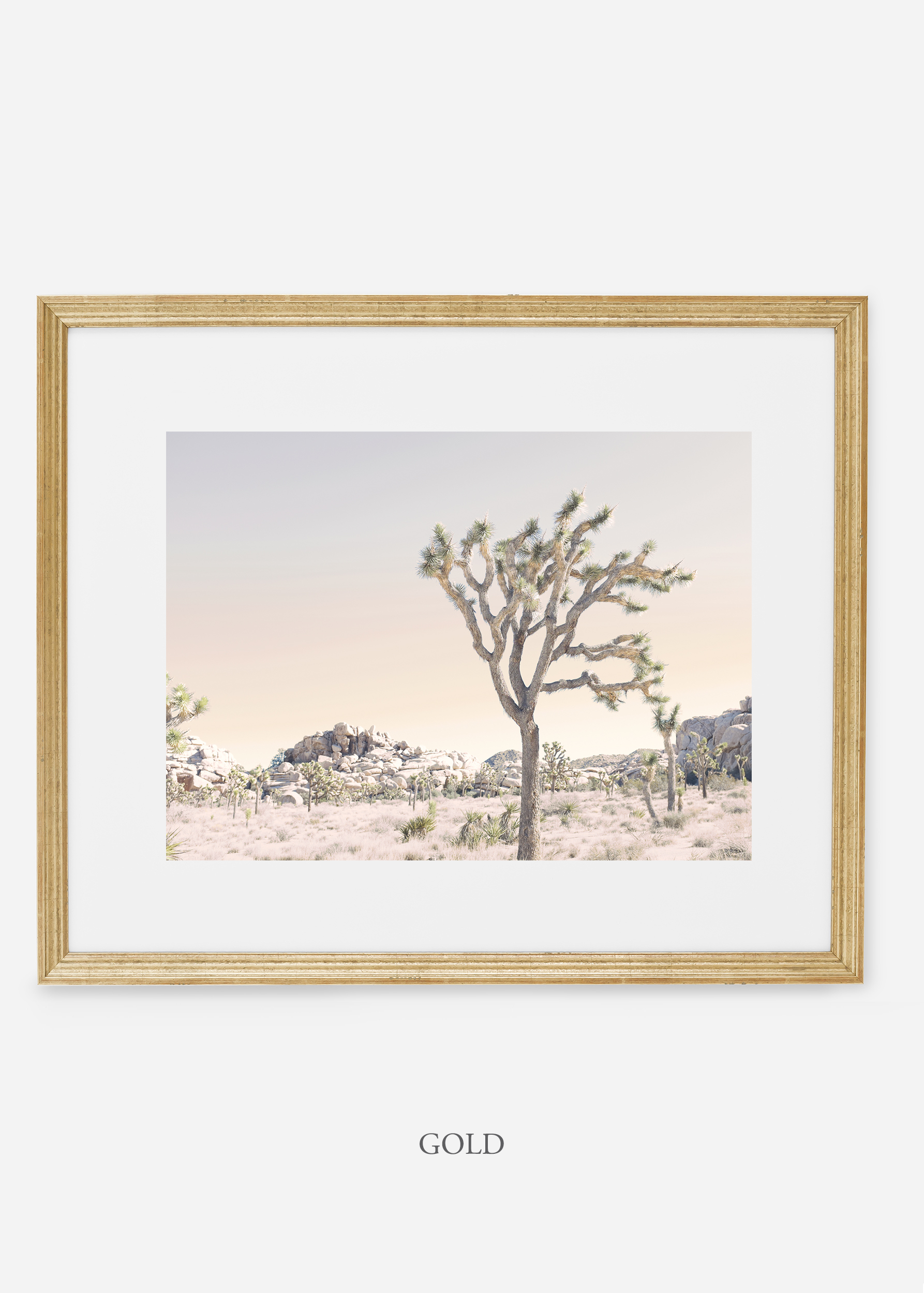 WilderCalifornia_goldframe_JoshuaTree_No.3_interiordesign_prints_art.jpg