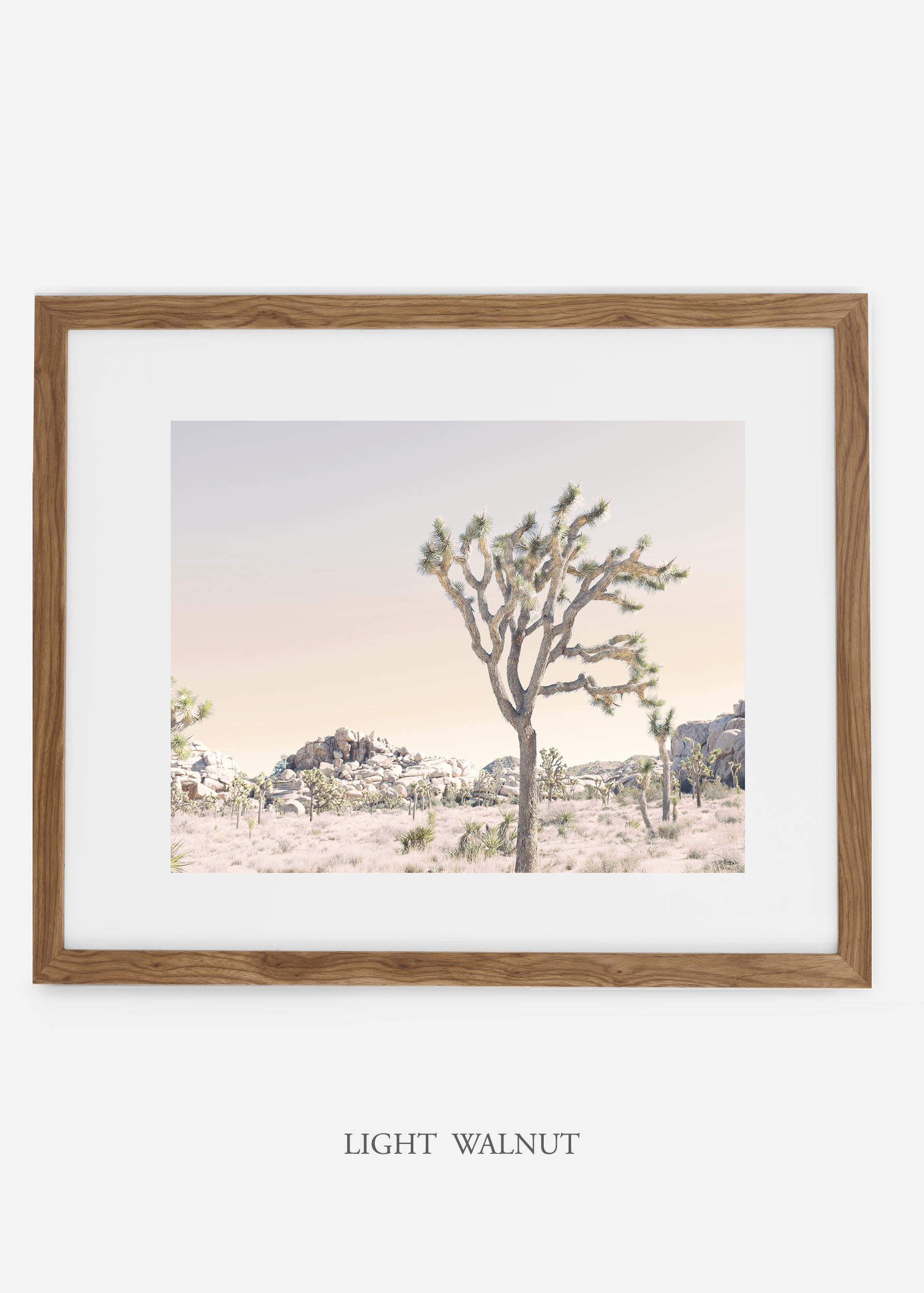 WilderCalifornia_lightwalnutframe_JoshuaTree_No.3_interiordesign_prints_art.jpg