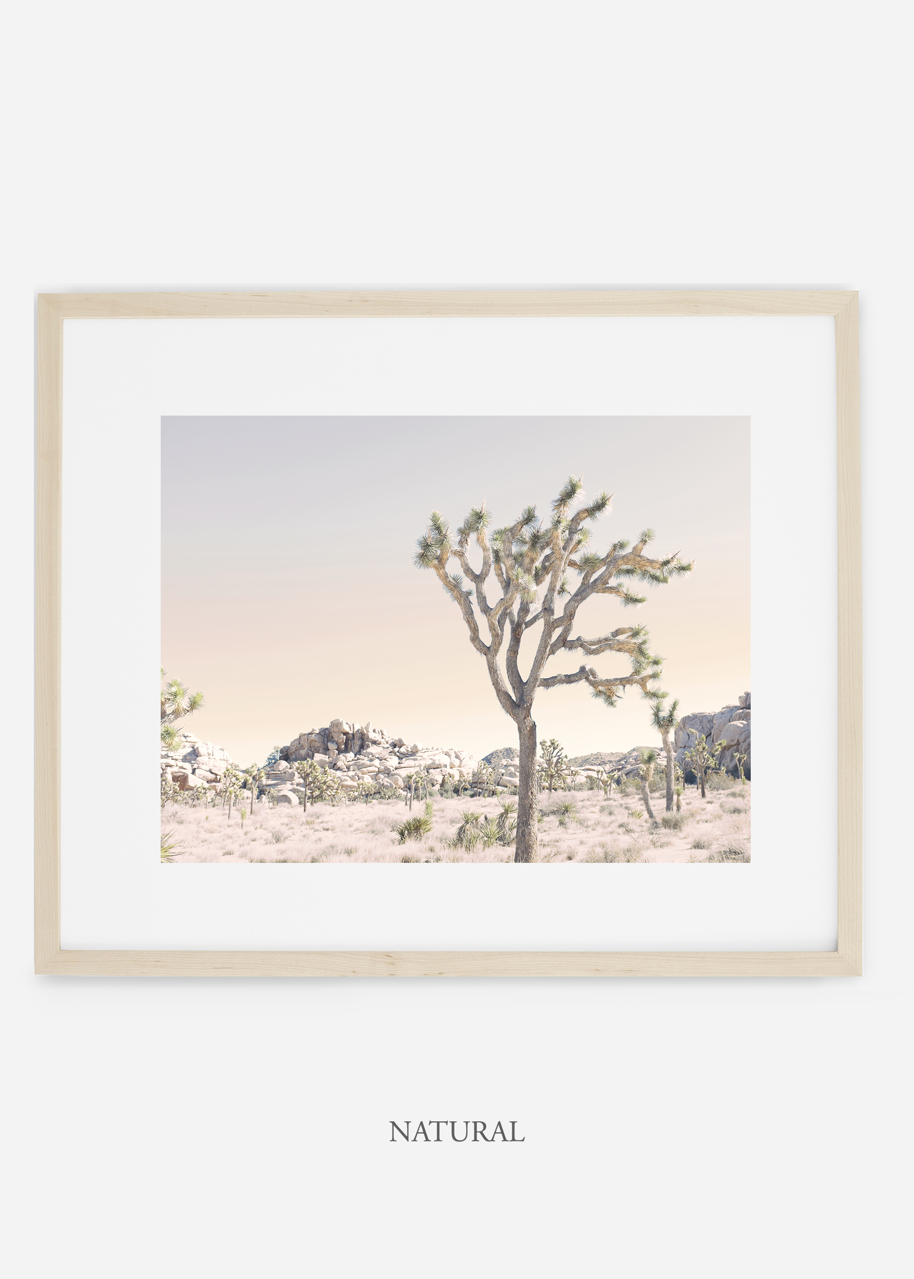 WilderCalifornia_naturalframe_JoshuaTree_No.3_interiordesign_prints_art.jpg
