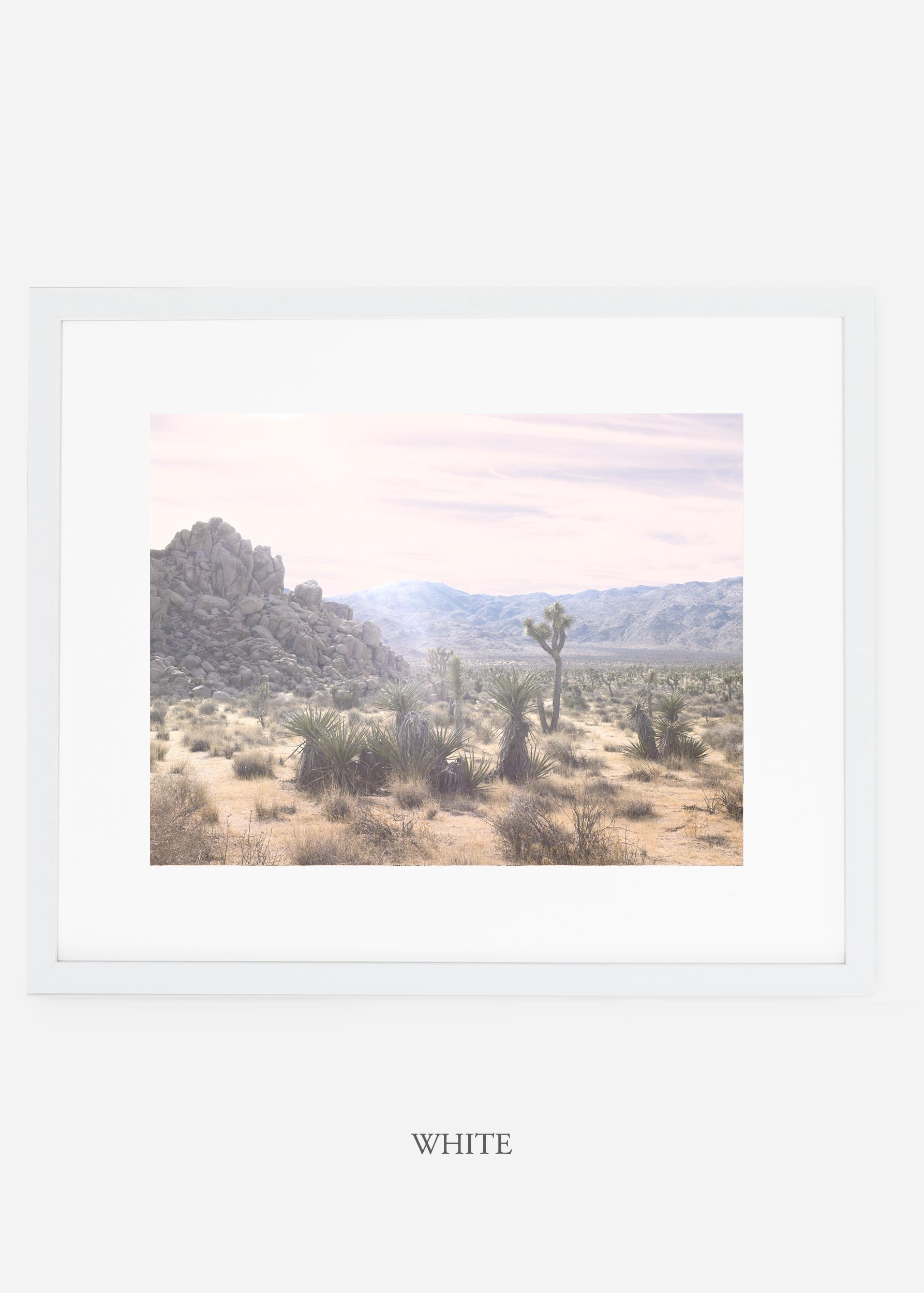 WilderCalifornia_whiteframe_JoshuaTree_No.9_interiordesign_prints_art.jpg