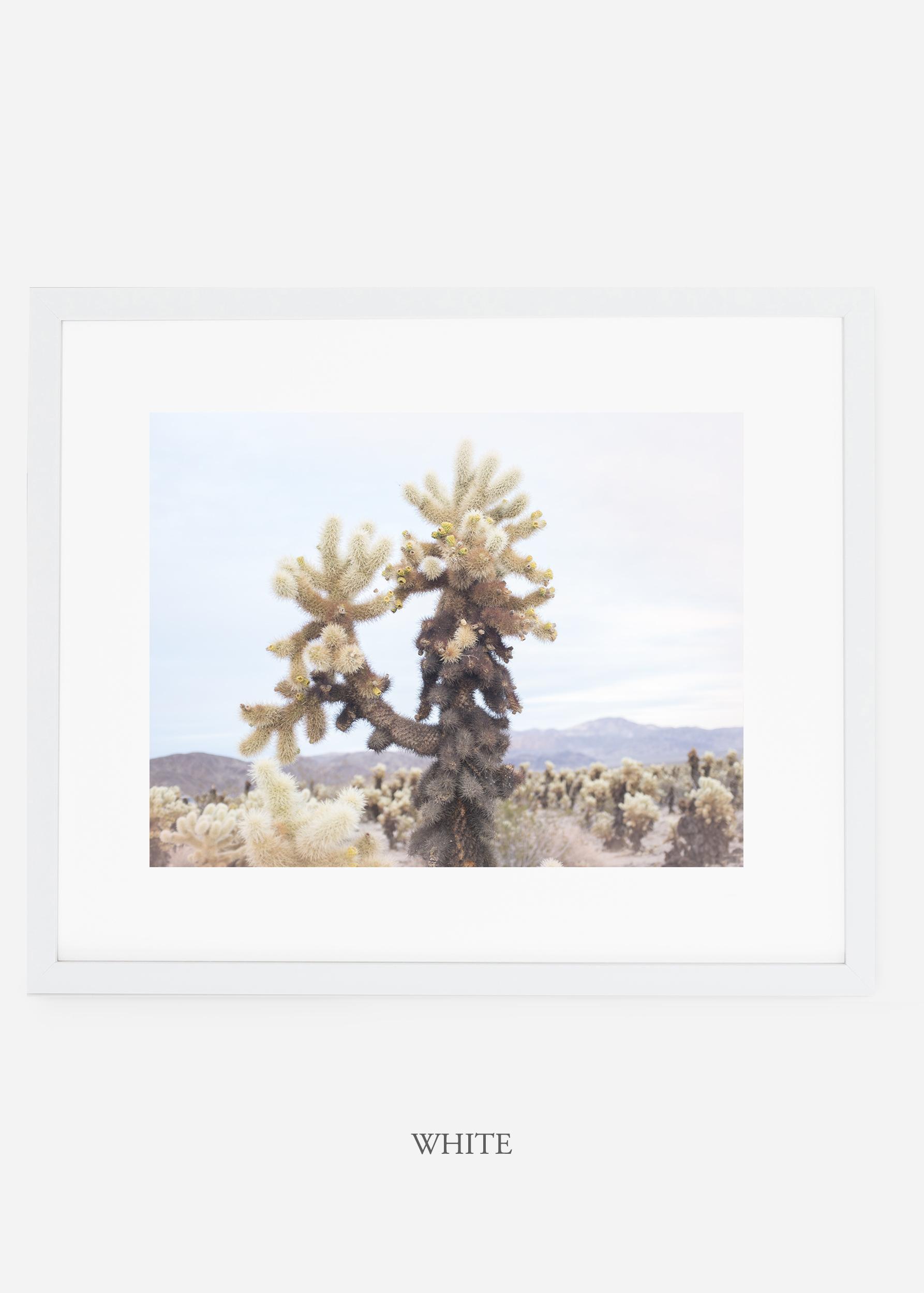 JoshuaTree_whiteframe__No.10_interiordesign_cactusprint_art.jpg