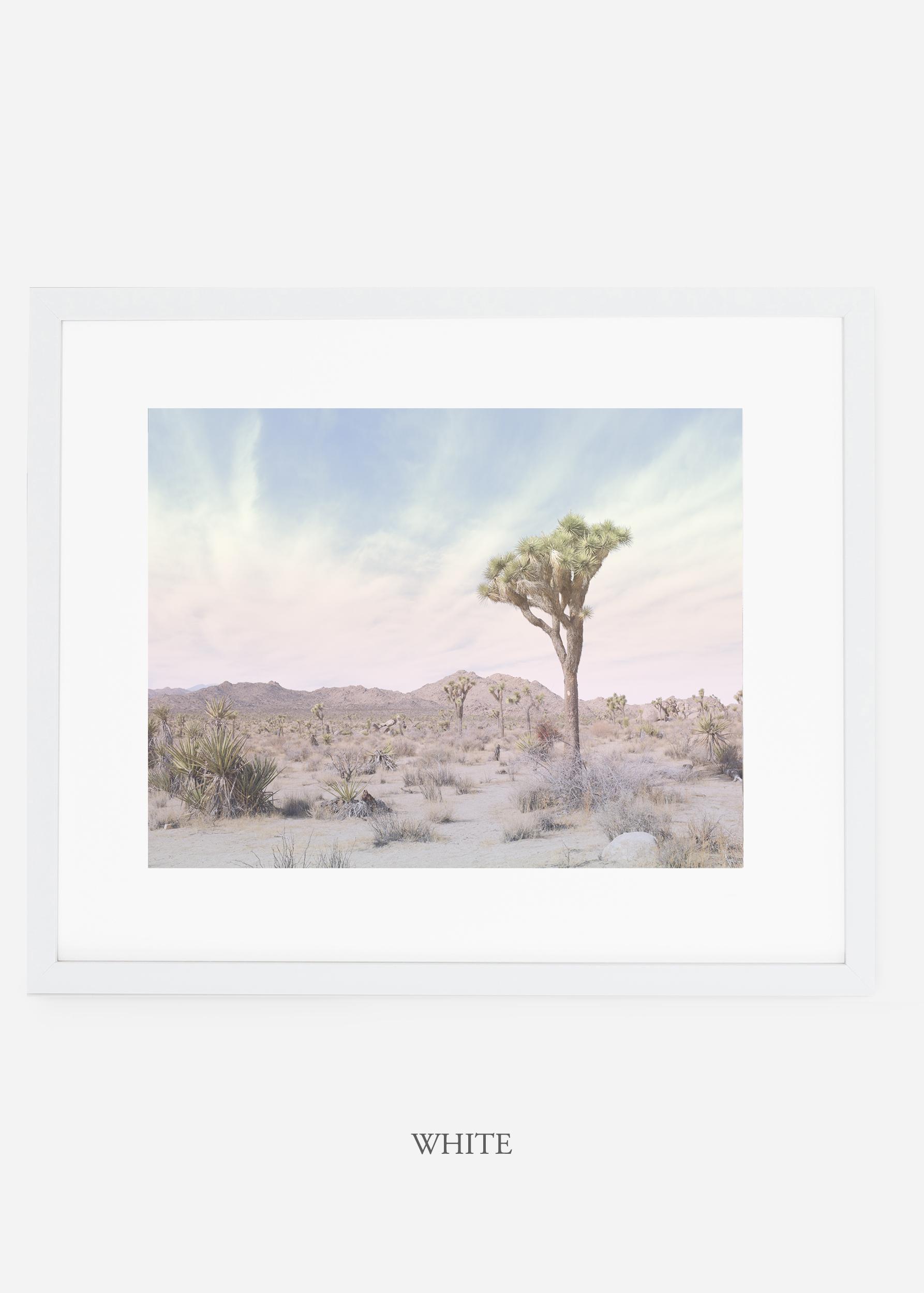 WilderCalifornia_whiteframe_JoshuaTree_No.13_interiordesign_prints_art.jpg