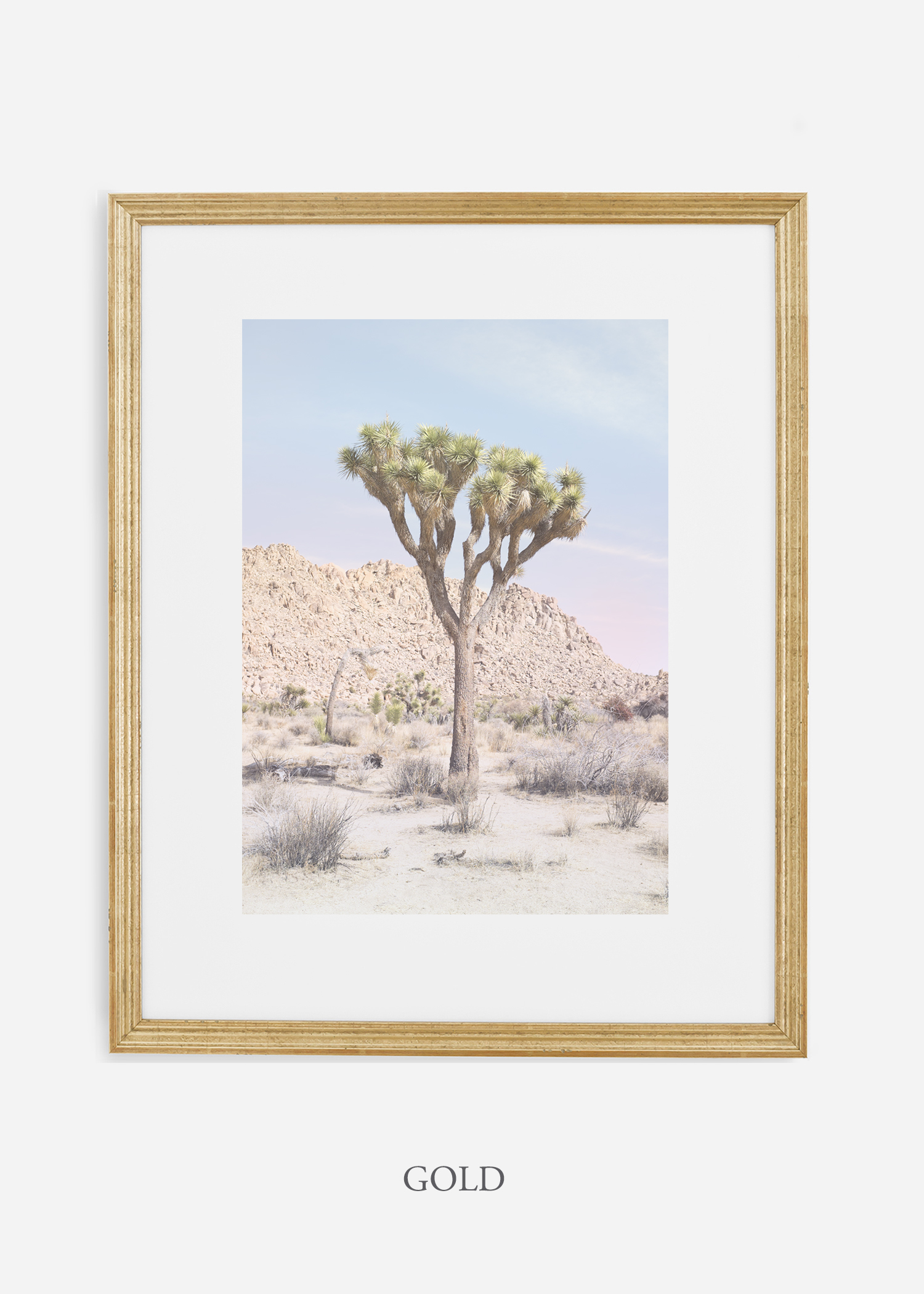 JoshuaTree_14_leaningtrees_goldframe.jpg