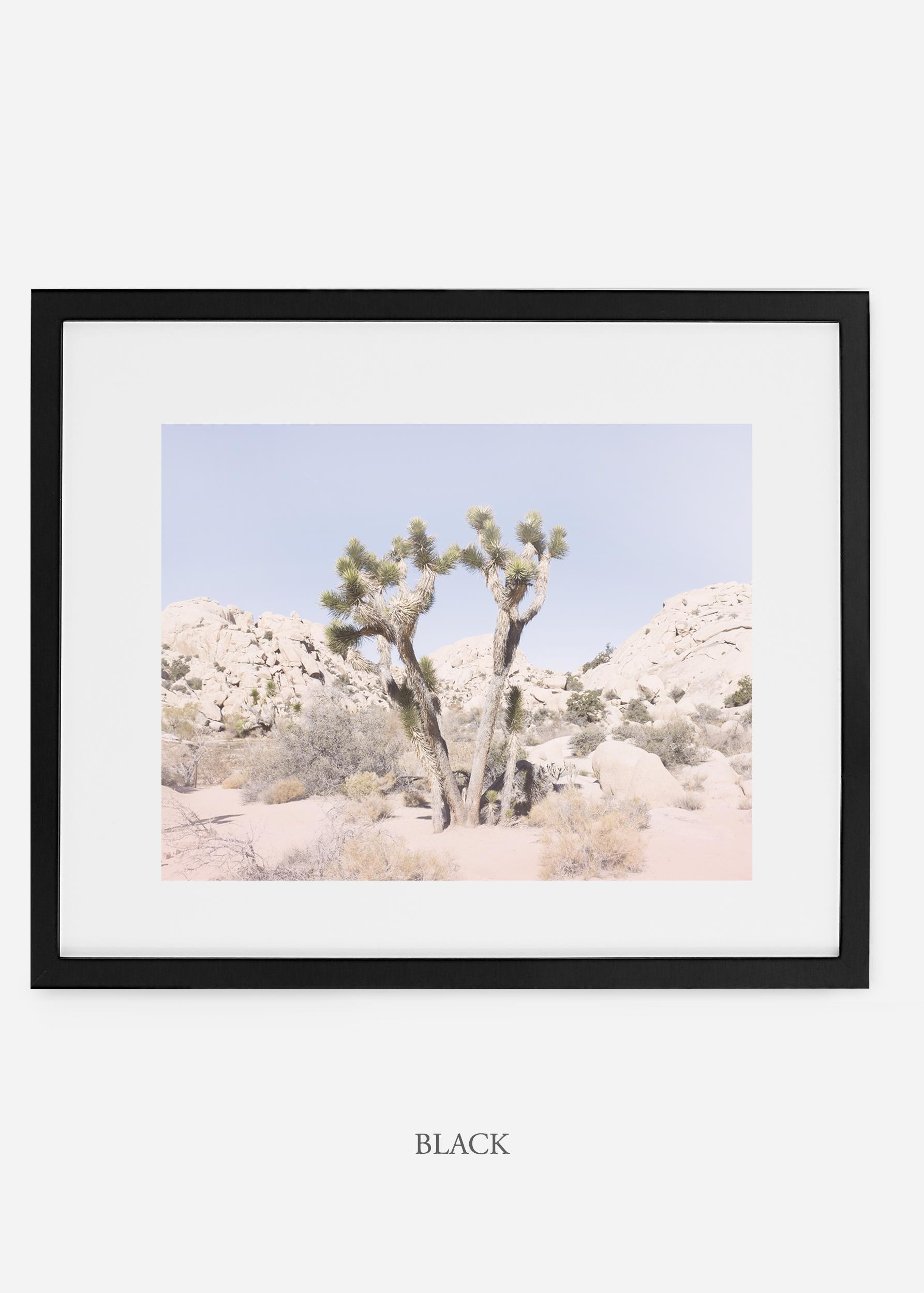 WilderCalifornia_black_JoshuaTree_No.16_interiordesign_prints_art.jpg