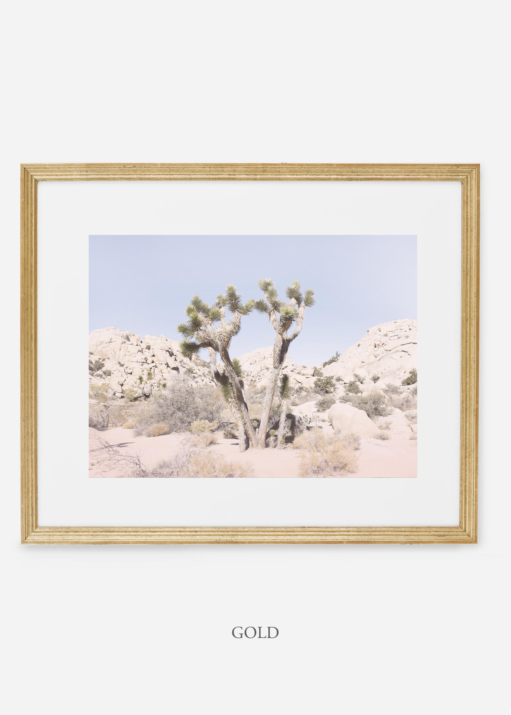 WilderCalifornia_gold_JoshuaTree_No.16_interiordesign_prints_art.jpg