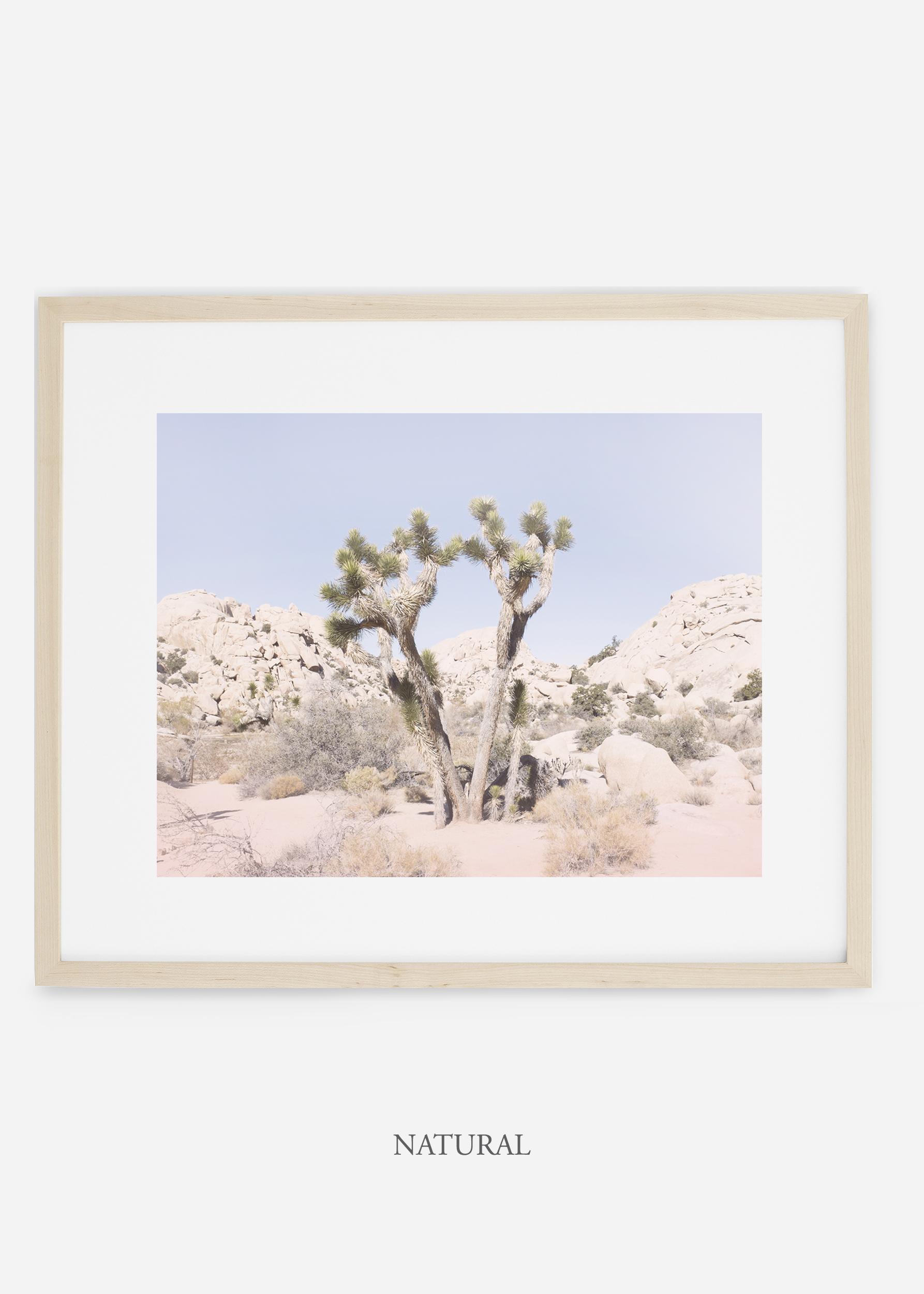 WilderCalifornia_natural_JoshuaTree_No.16_interiordesign_prints_art.jpg