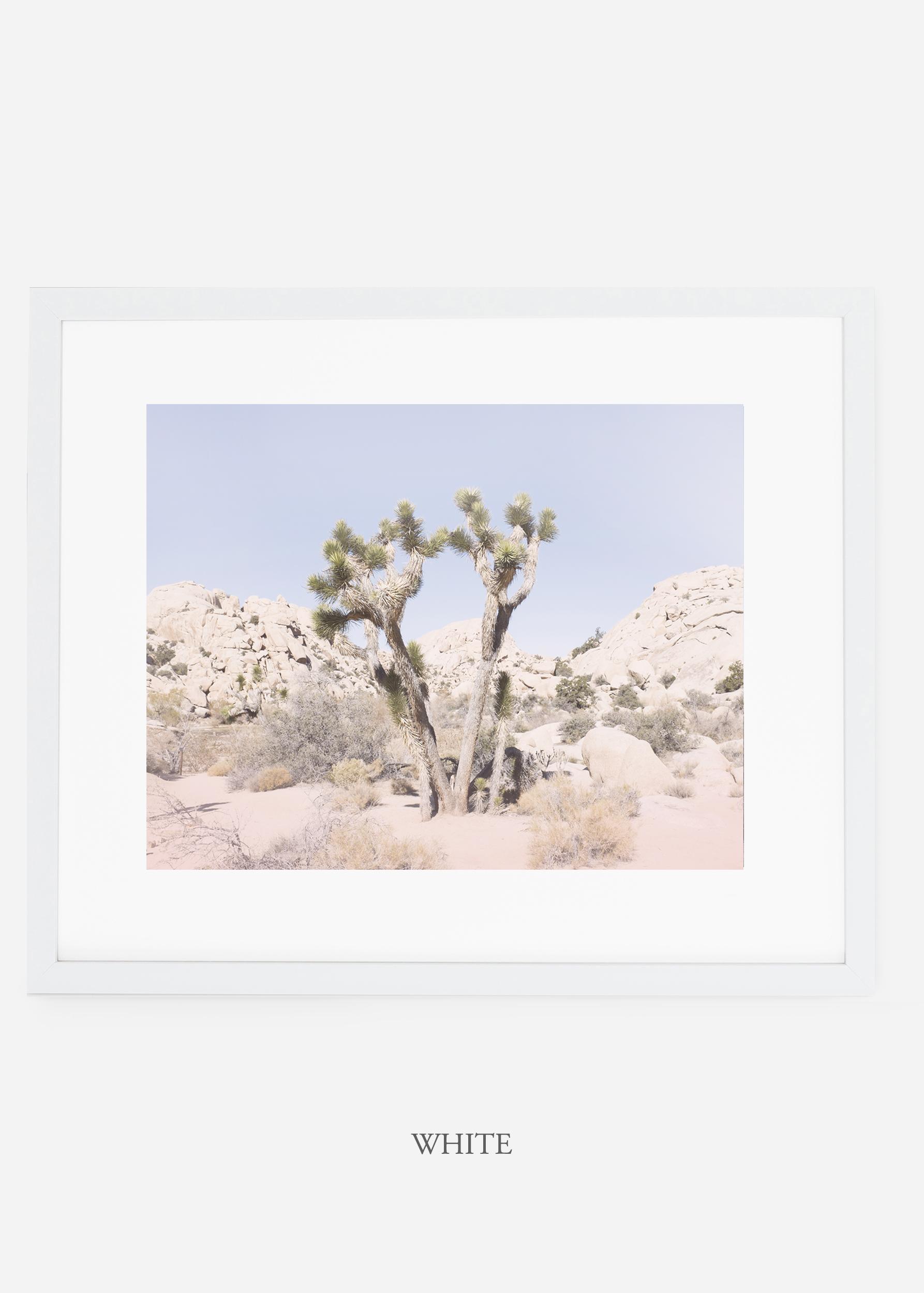 WilderCalifornia_whiteframe_JoshuaTree_No.16_interiordesign_prints_art.jpg
