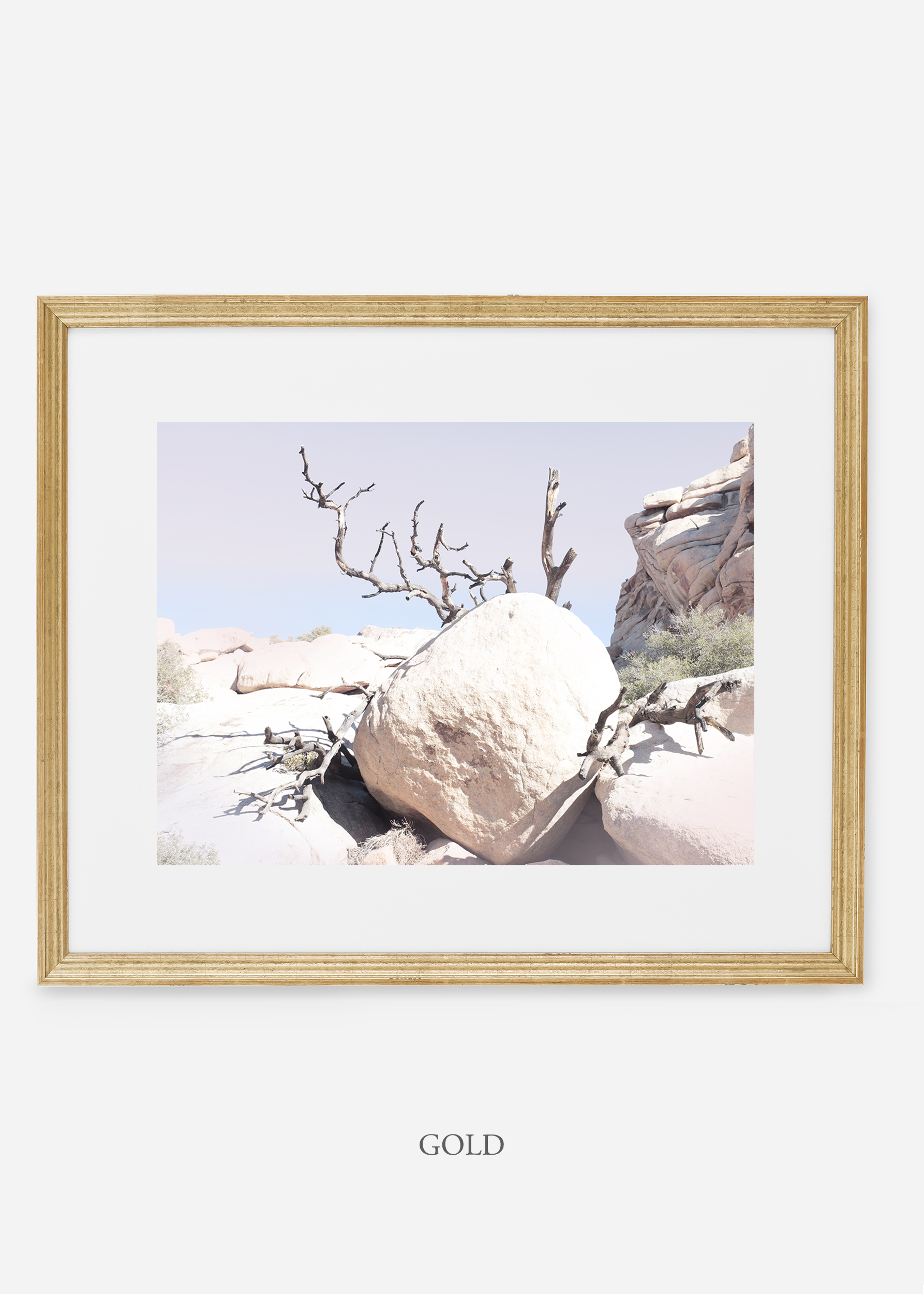 WilderCalifornia_gold_JoshuaTree_No.17_interiordesign_prints_art.jpg