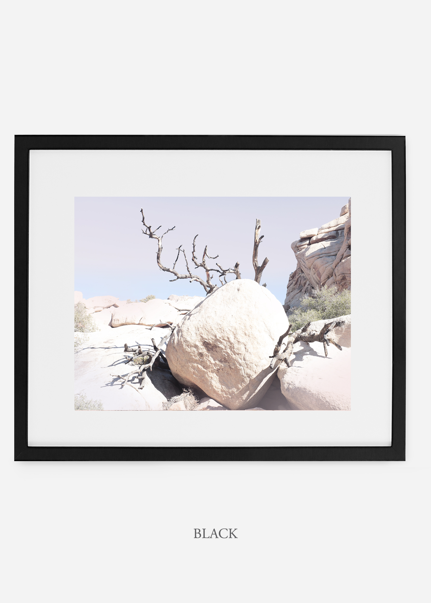 WilderCalifornia_black_JoshuaTree_No.17_interiordesign_prints_art.jpg