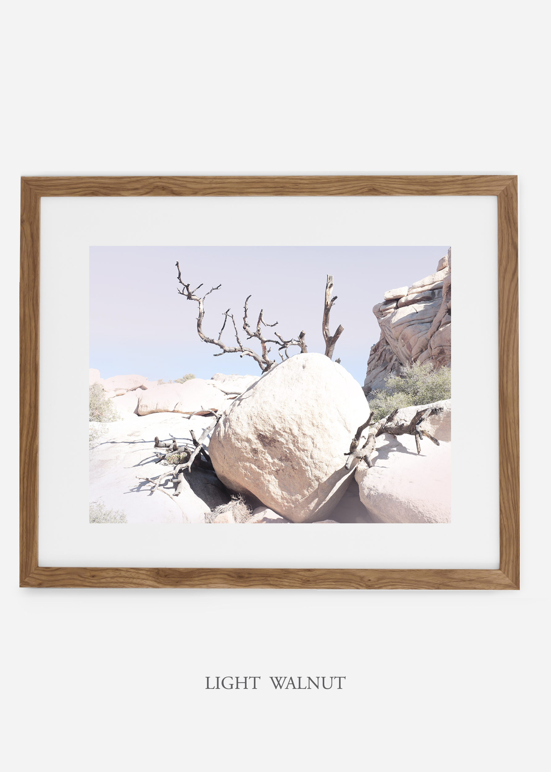 WilderCalifornia_lightwalnut_JoshuaTree_No.17_interiordesign_prints_art.jpg