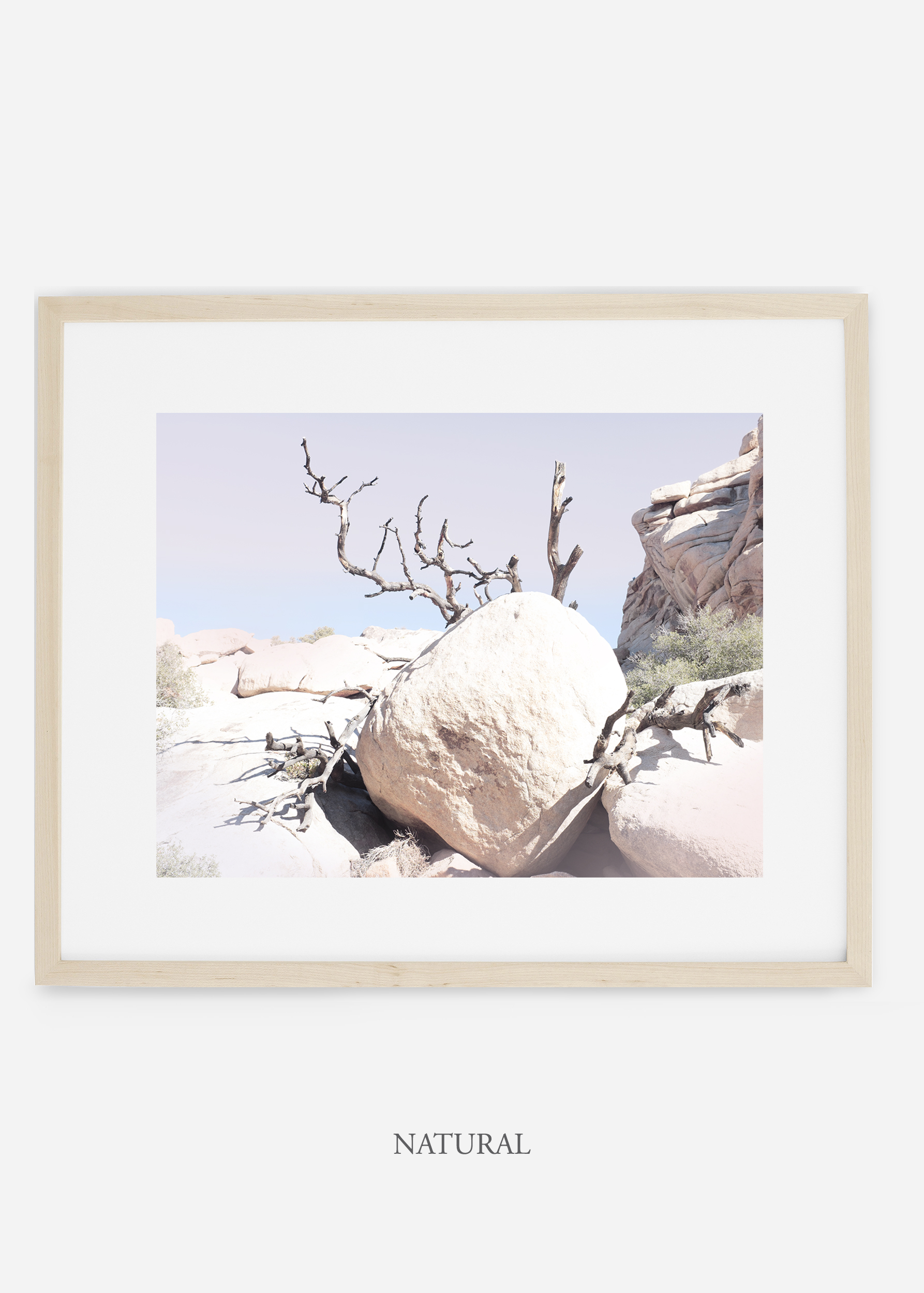 WilderCalifornia_natural_JoshuaTree_No.17_interiordesign_prints_art.jpg