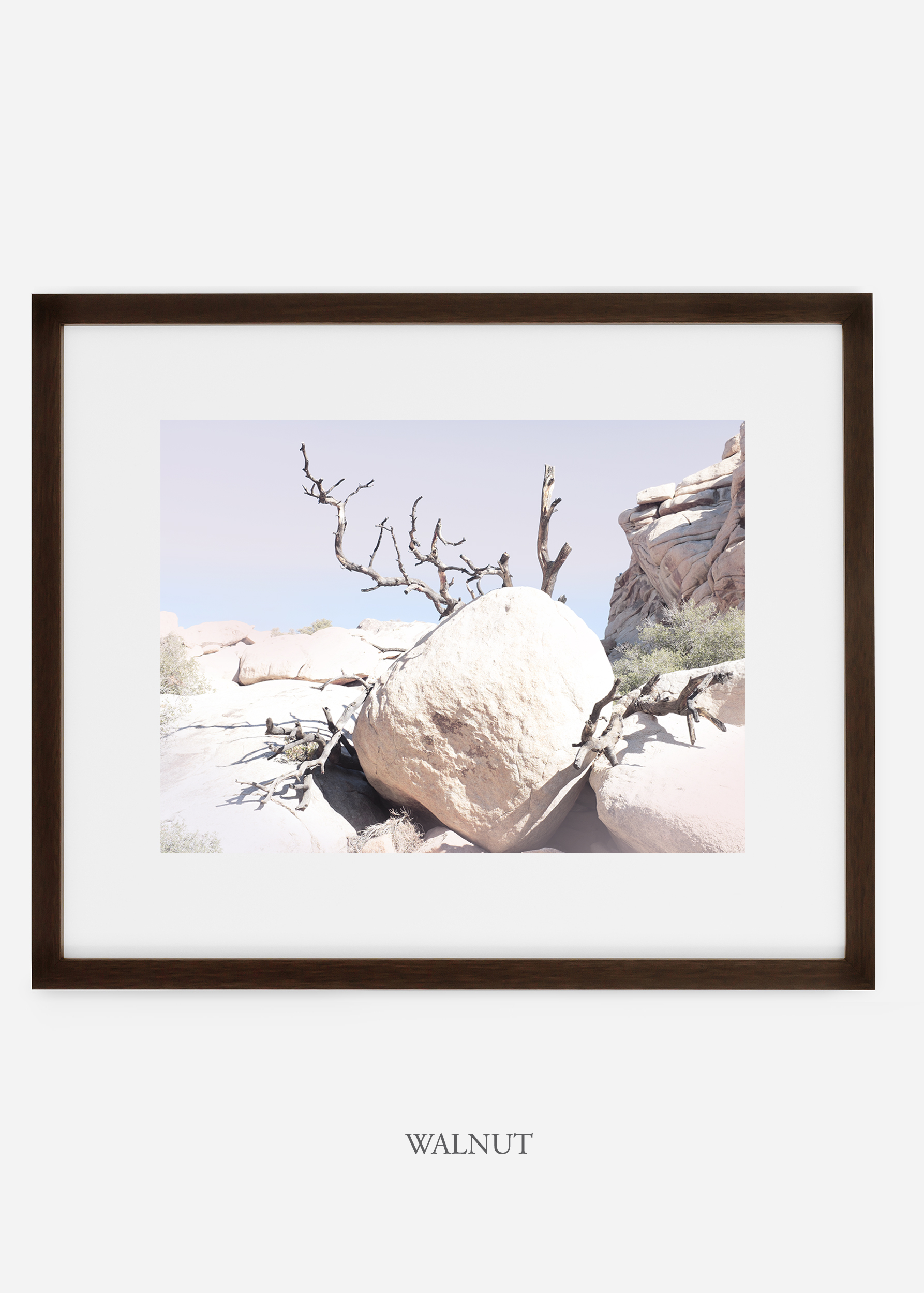 WilderCalifornia_walnut_JoshuaTree_No.17_interiordesign_prints_art.jpg