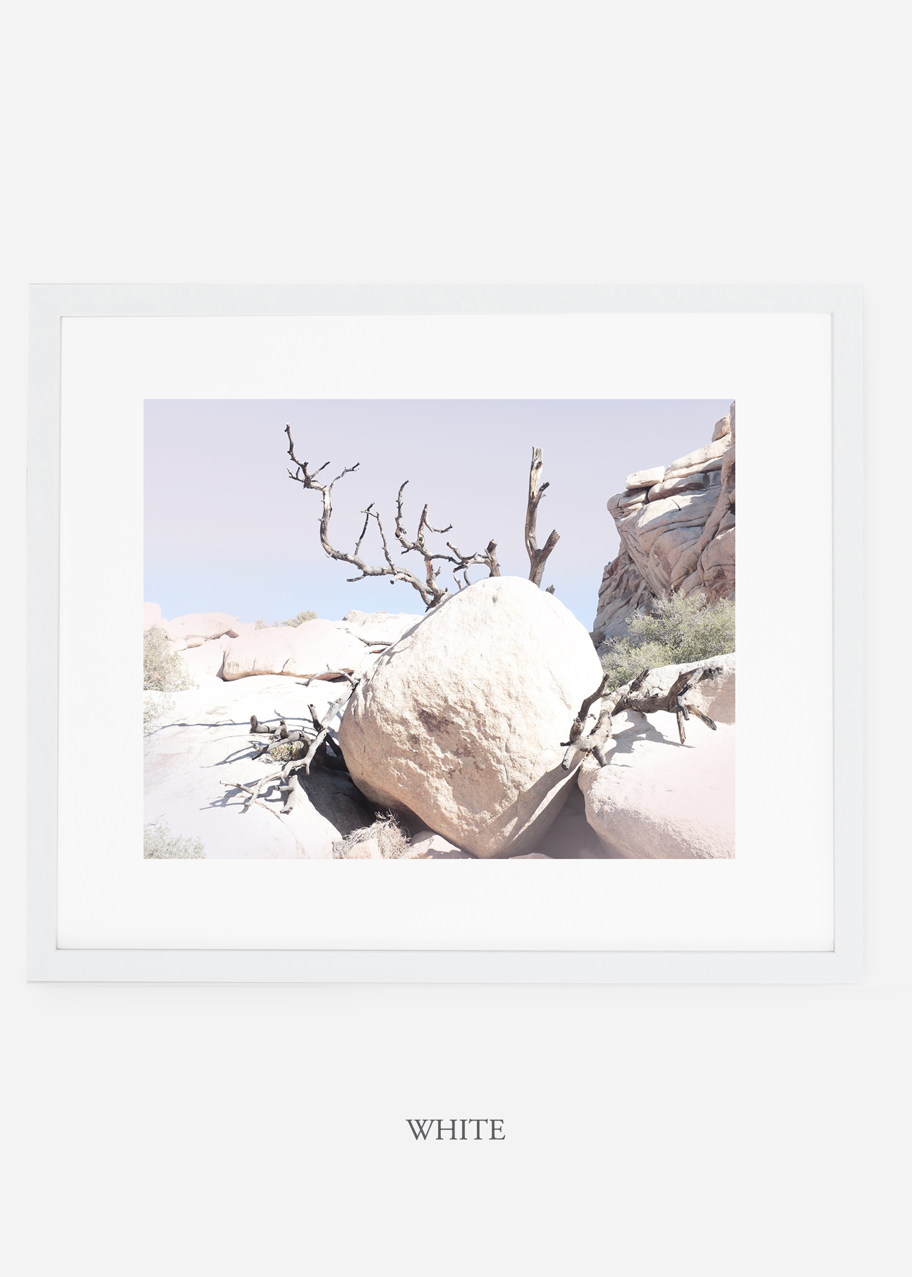 WilderCalifornia_whiteframe_JoshuaTree_No.17_interiordesign_prints_art.jpg