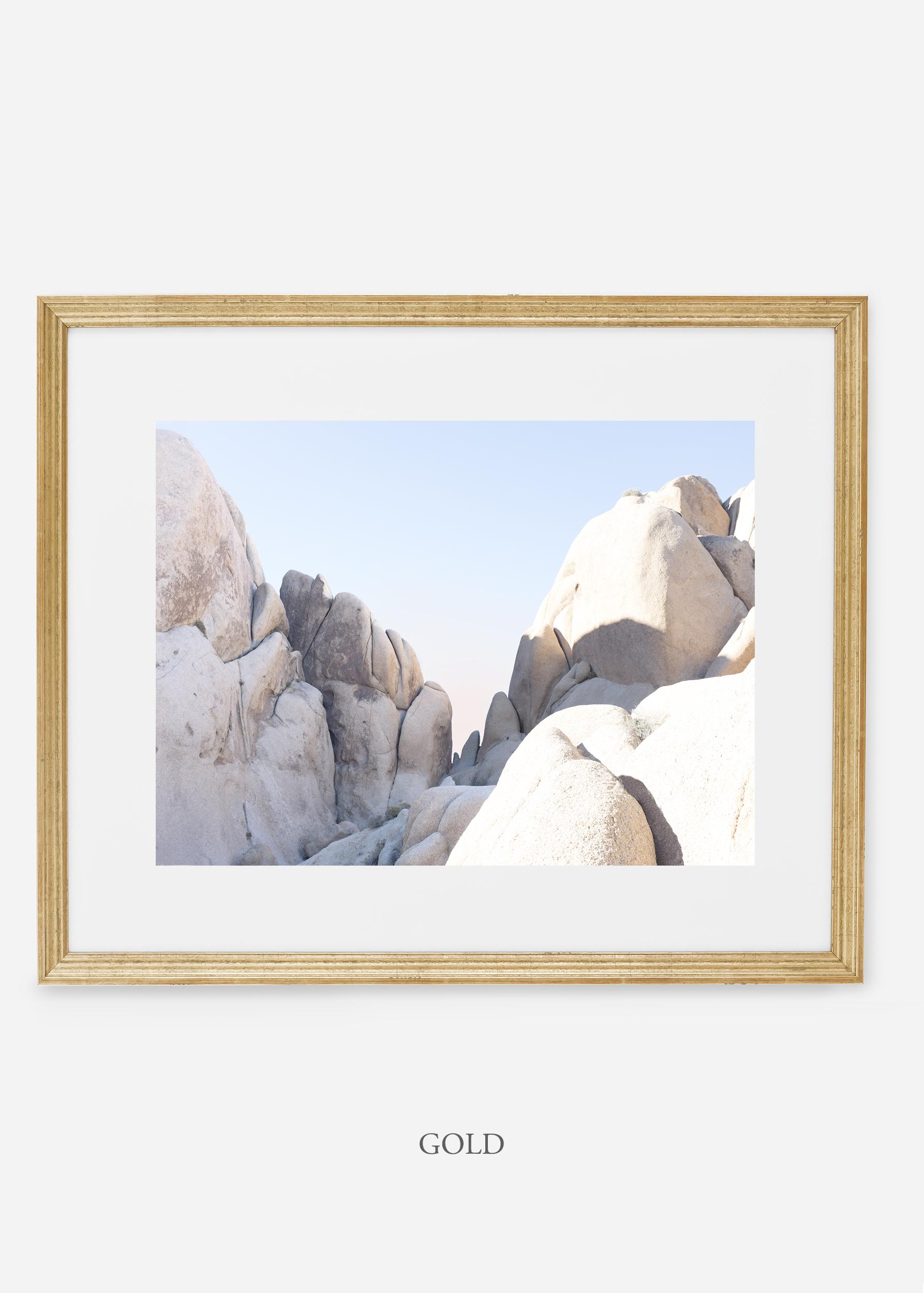 WilderCalifornia_gold_JoshuaTree_No.18_interiordesign_prints_art.jpg