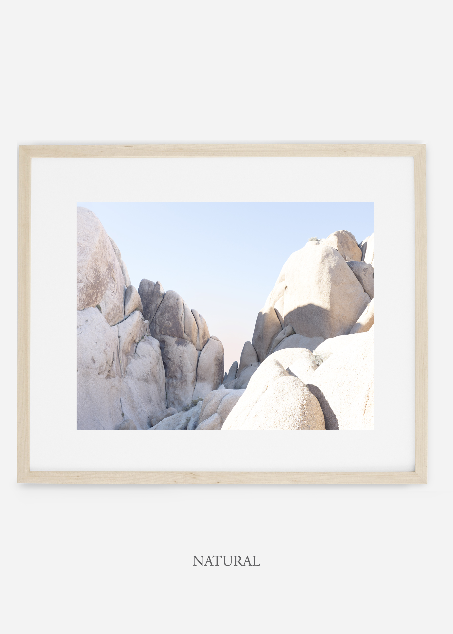 WilderCalifornia_natural_JoshuaTree_No.18_interiordesign_prints_art.jpg