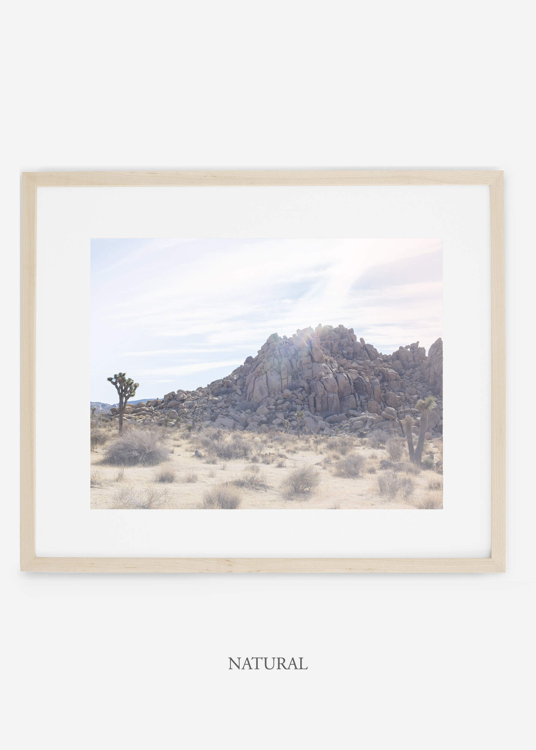 WilderCalifornia_natural_JoshuaTree_No.20_interiordesign_prints_art.jpg