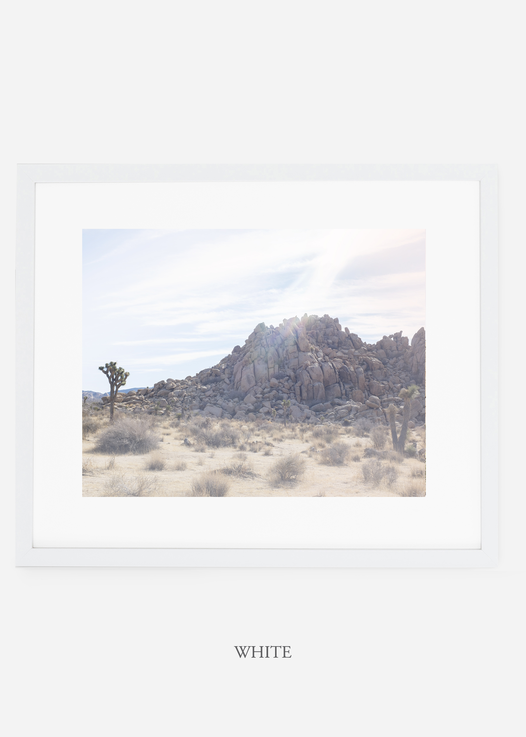 WilderCalifornia_whiteframe_JoshuaTree_No.20_interiordesign_prints_art.jpg
