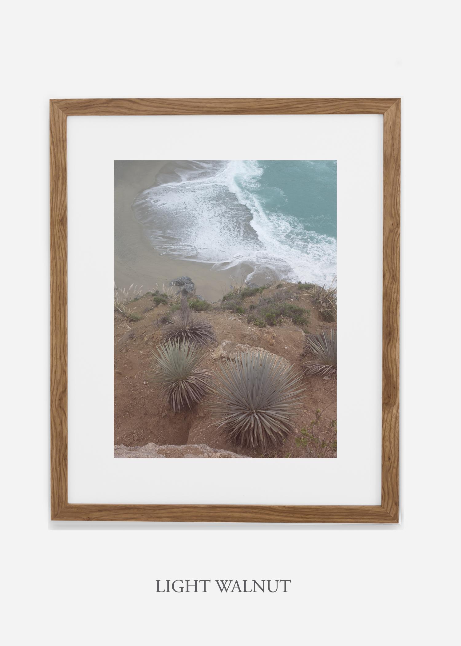 BigSurNo.3_lightwalnut_BigSur_Ocean_Beach__Art_Photography_interiordesign_bohemian_cactusart.jpg