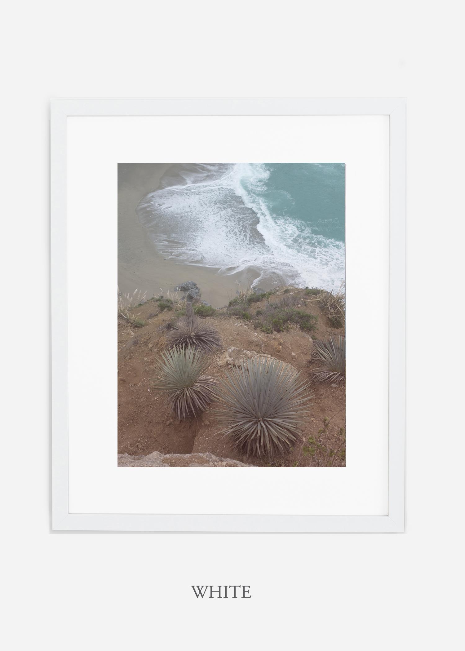 BigSurNo.3_whiteframe_BigSur_Ocean_Beach__Art_Photography_interiordesign_bohemian_cactusart.jpg
