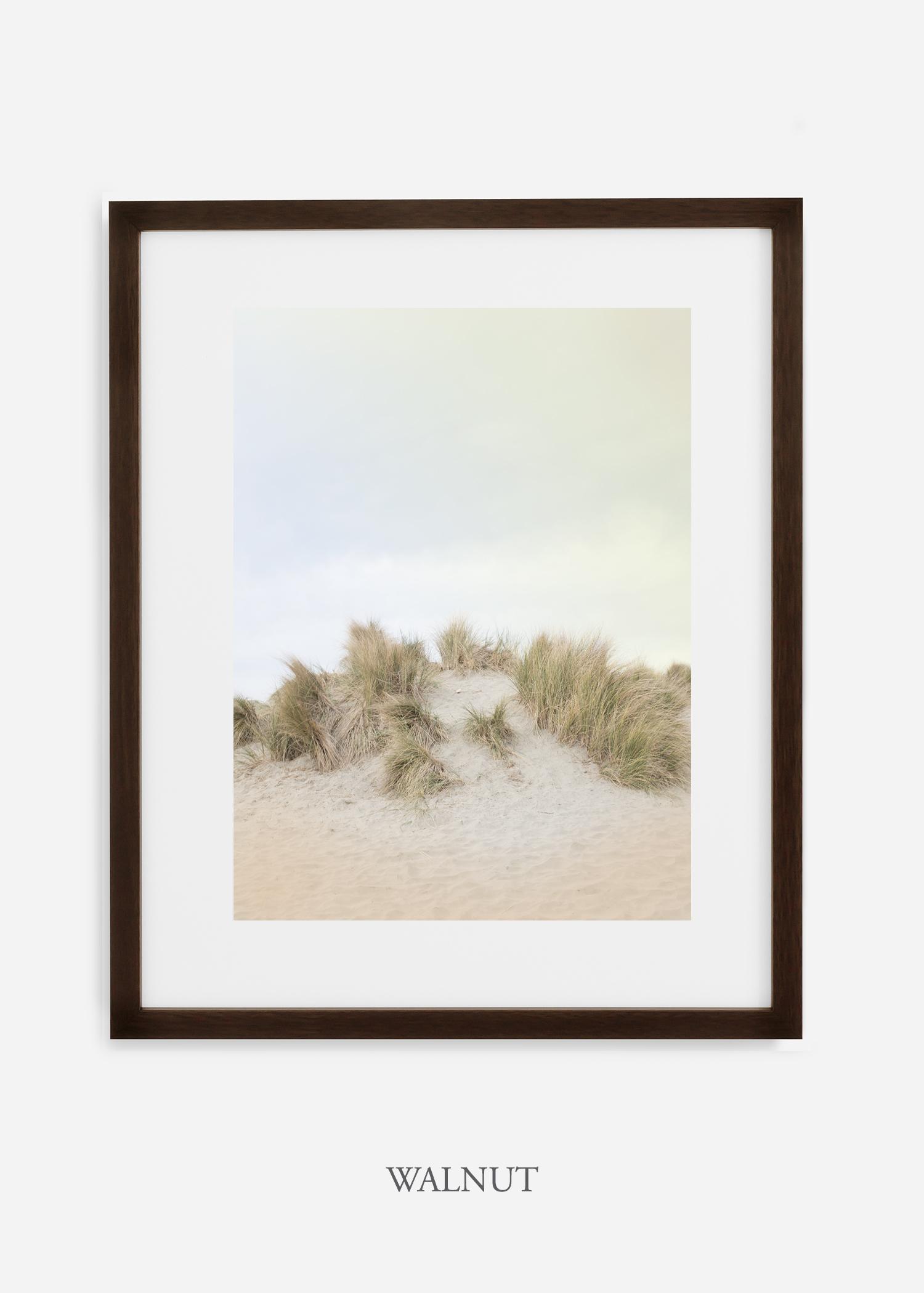 DunesNo.2_walnutframe_BigSur_Ocean_Beach__Art_Photography_interiordesign_bohemian_cactusart.jpg
