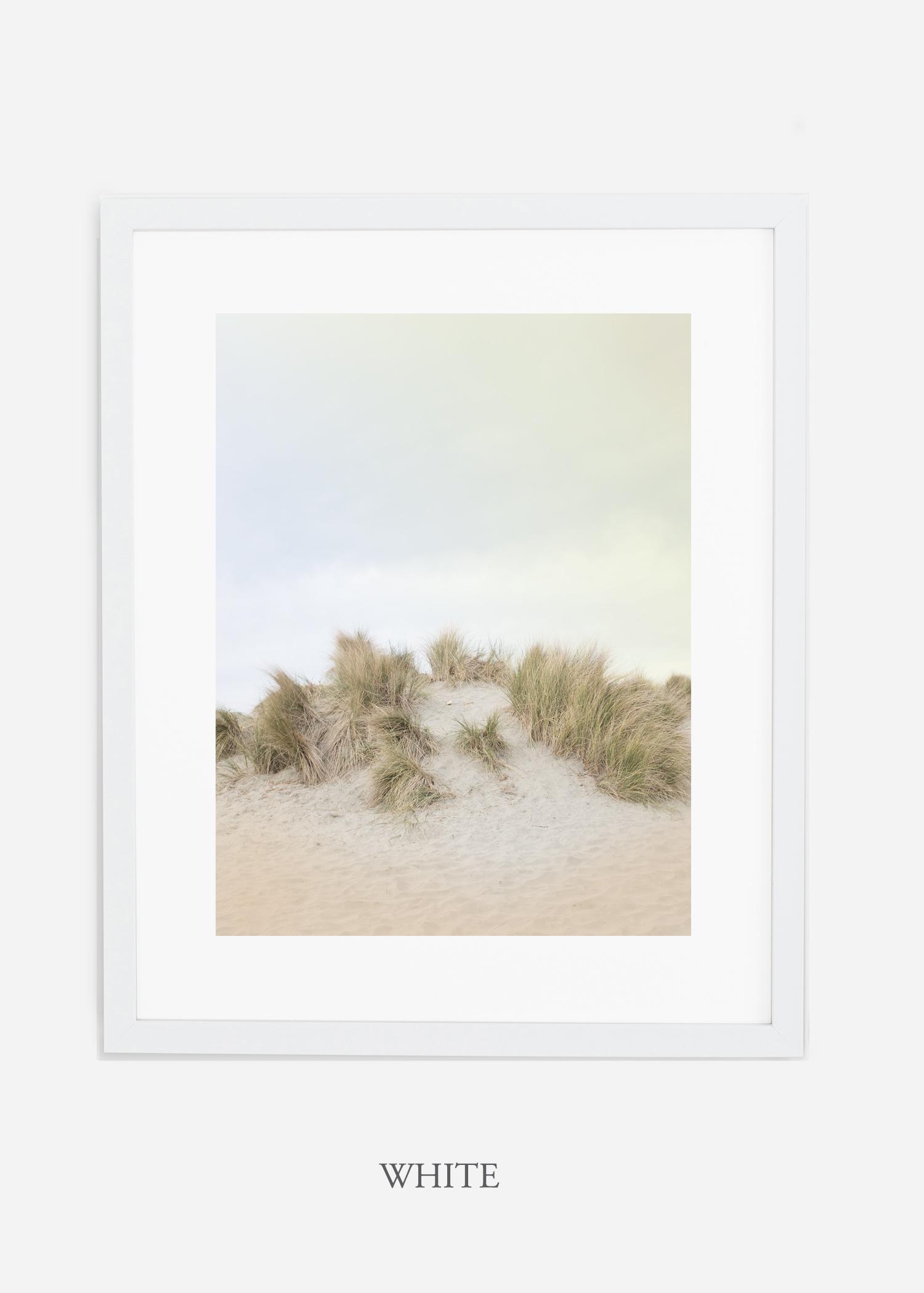DunesNo.2_whiteframe_BigSur_Ocean_Beach__Art_Photography_interiordesign_bohemian_cactusart.jpg