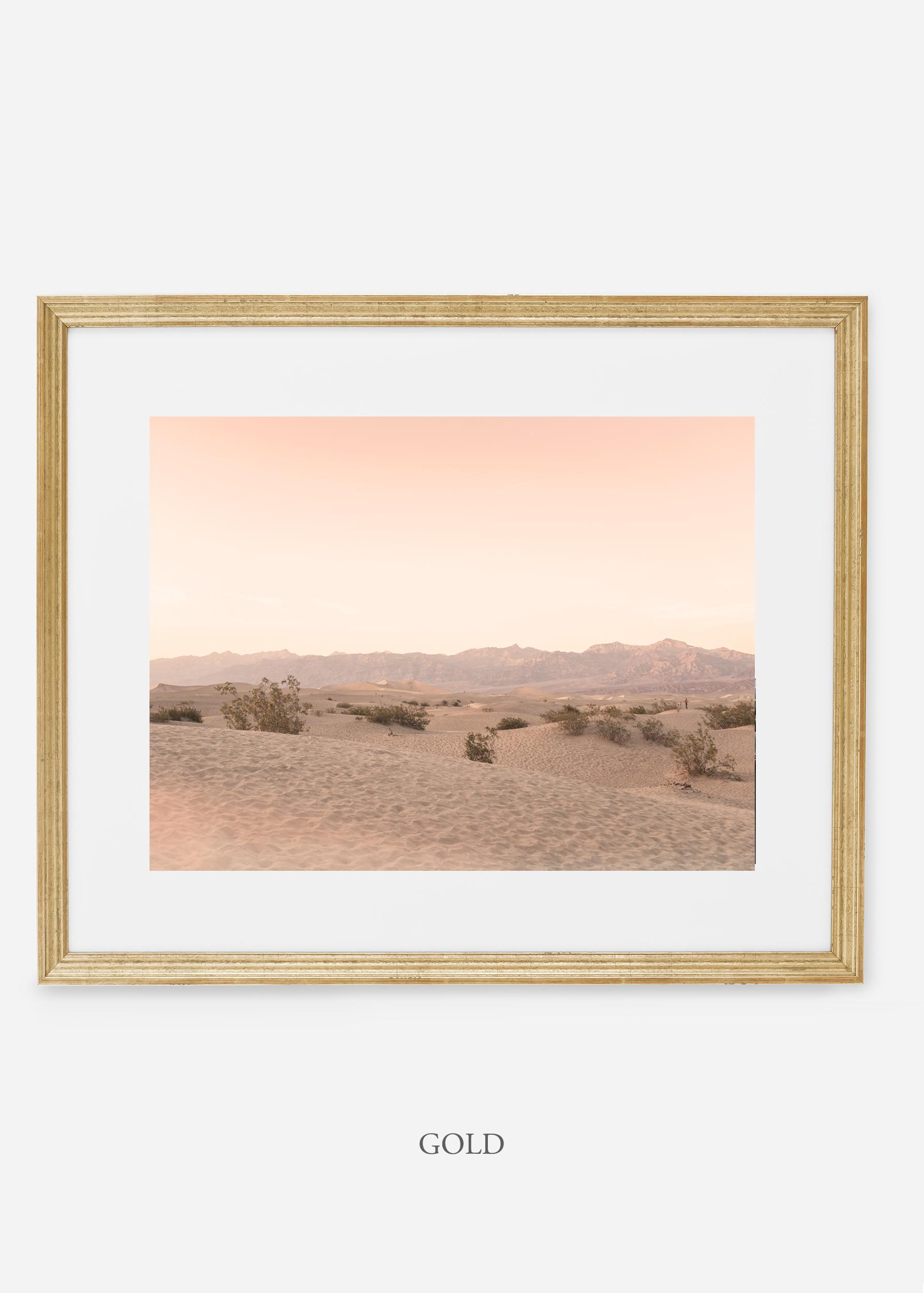 wildercalifornia_goldframe_deathvalley_4_minimal_cactus_art_interiordesign_blackandwhite.jpg