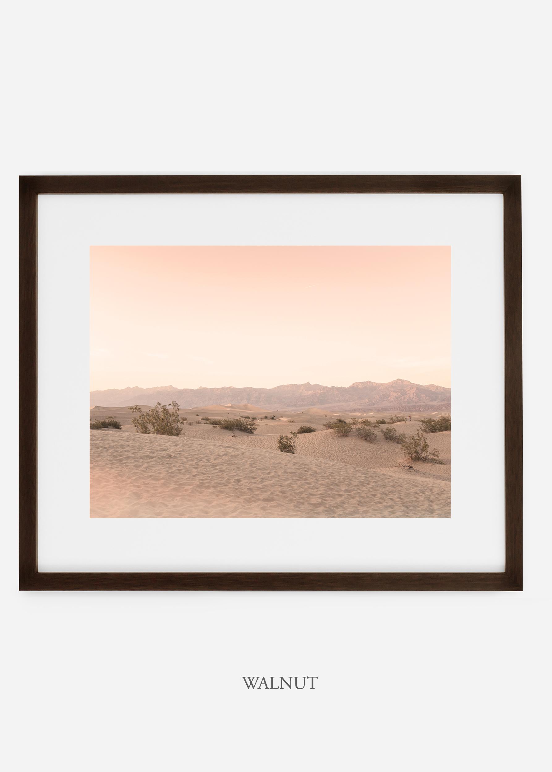 wildercalifornia_walnutframe_deathvalley_4_minimal_cactus_art_interiordesign_blackandwhite.jpg