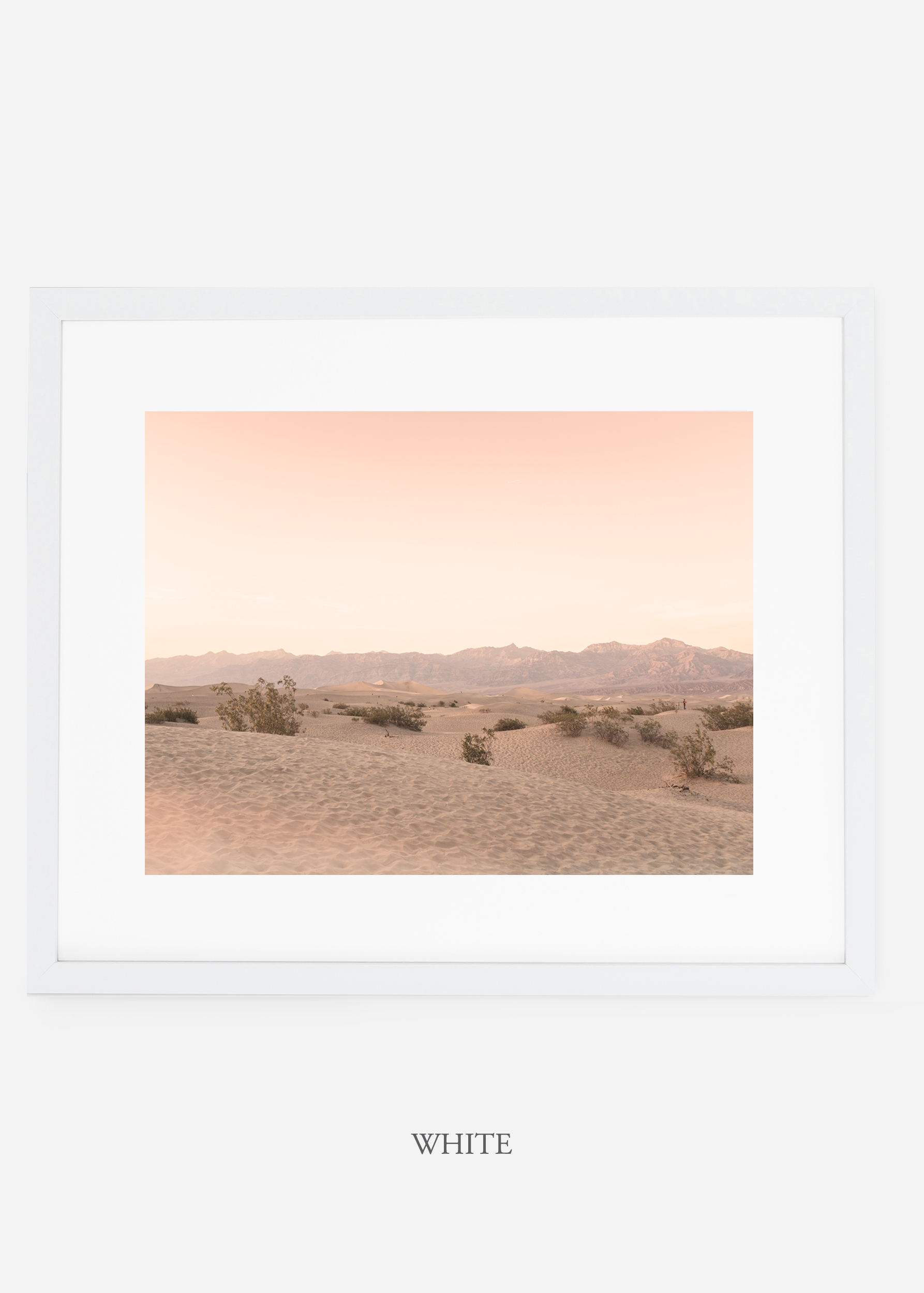 wildercalifornia_whiteframe_deathvalley_4_minimal_cactus_art_interiordesign_blackandwhite.jpg