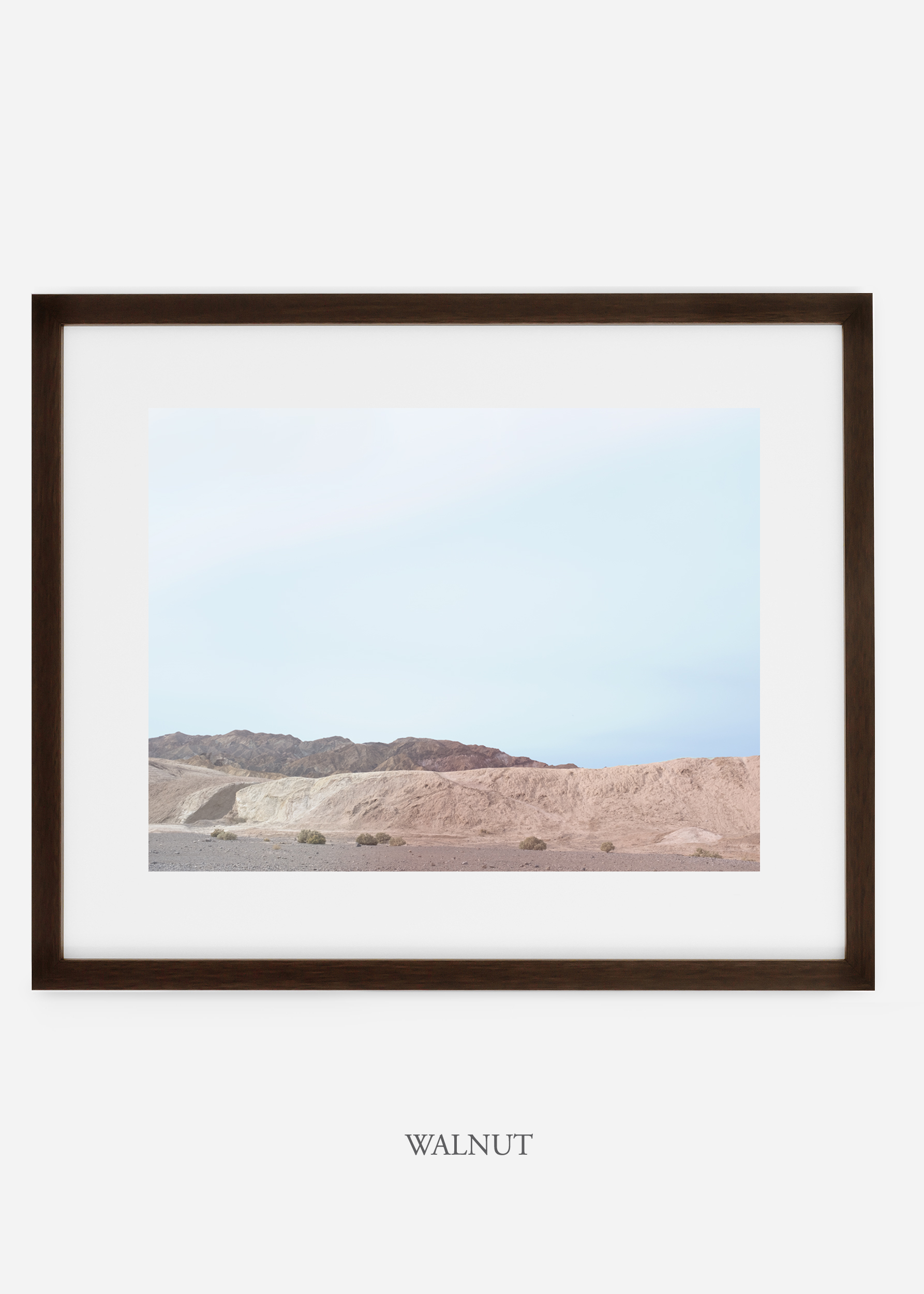 wildercalifornia_walnutframe_deathvalley_6_minimal_cactus_art_interiordesign_blackandwhite.jpg