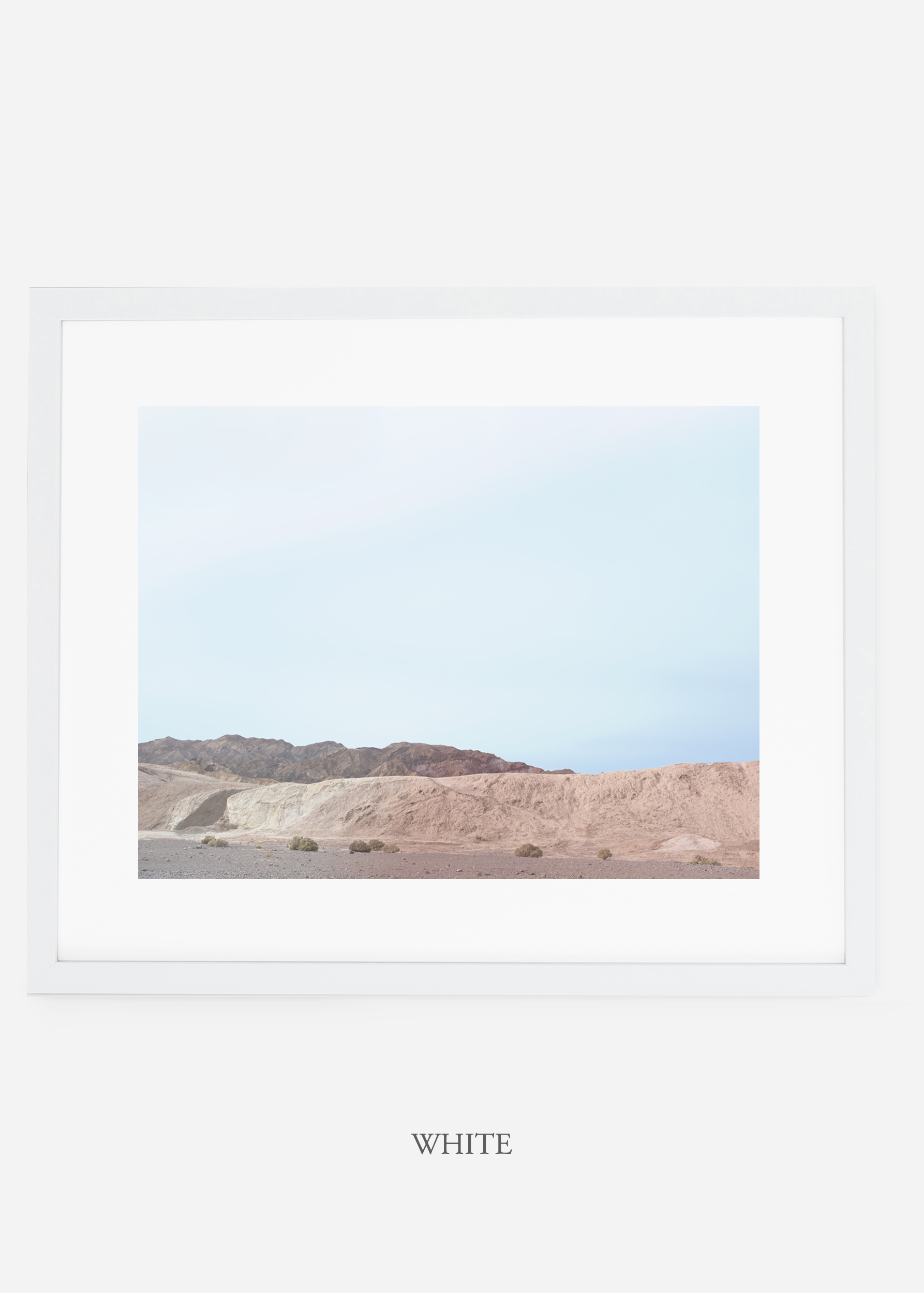 wildercalifornia_whiteframe_deathvalley_6_minimal_cactus_art_interiordesign_blackandwhite.jpg