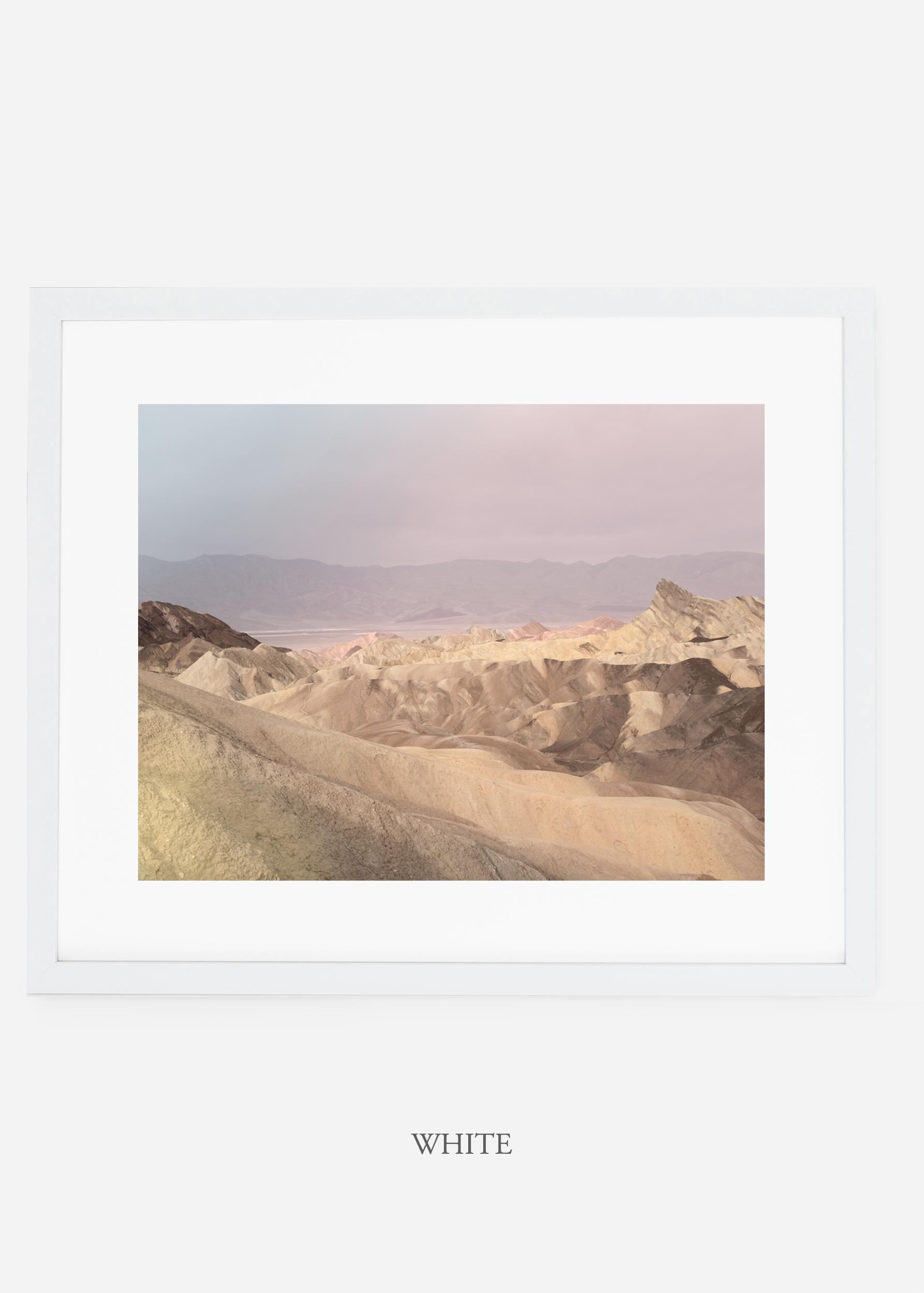wildercalifornia_whiteframe_deathvalley_10_minimal_cactus_art_interiordesign_.jpg