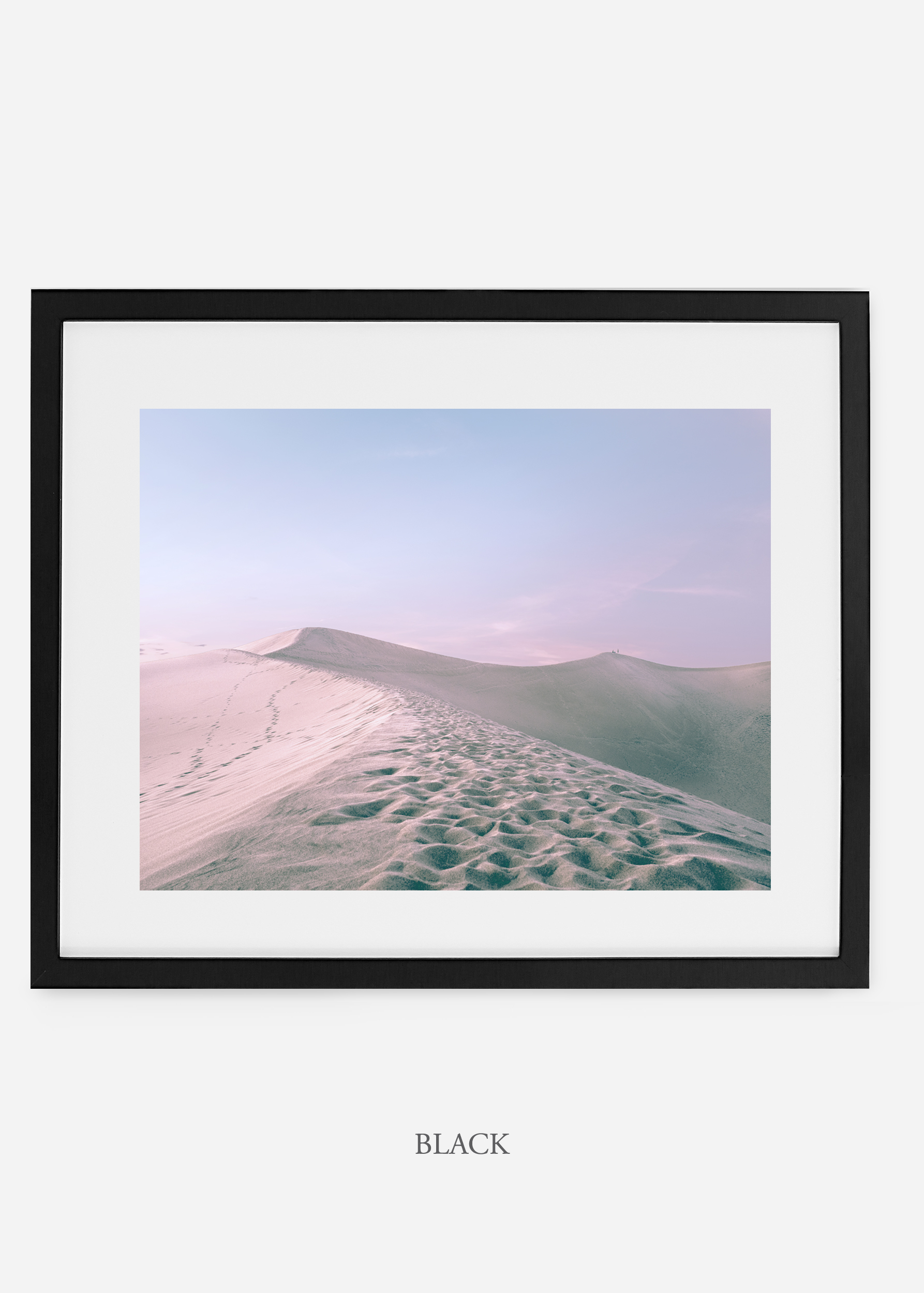 wildercalifornia_blackframe__deathvalley_16_cactus_art_interiordesign_blackandwhite.jpg