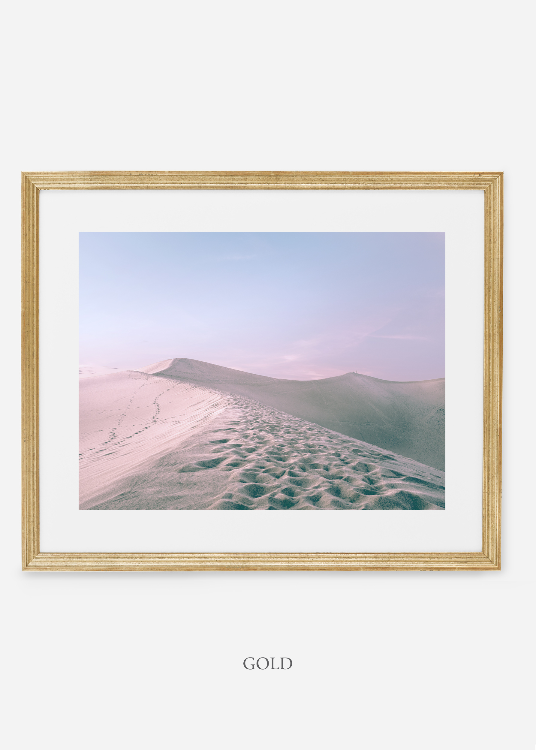 wildercalifornia_goldframe_deathvalley_16_minimal_cactus_art_interiordesign_blackandwhite.jpg