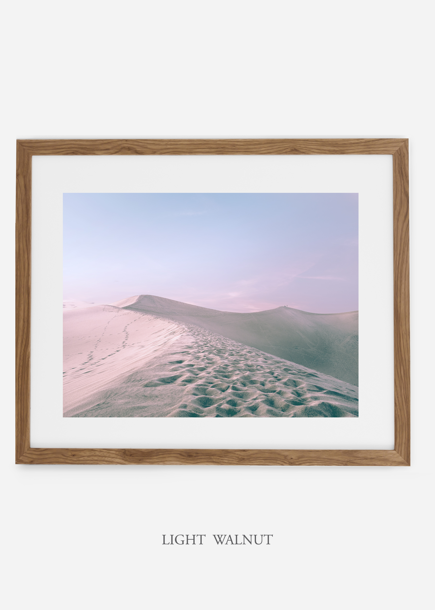 wildercalifornia_lightwalnutframe_deathvalley_16_minimal_cactus_art_interiordesign_blackandwhite.jpg