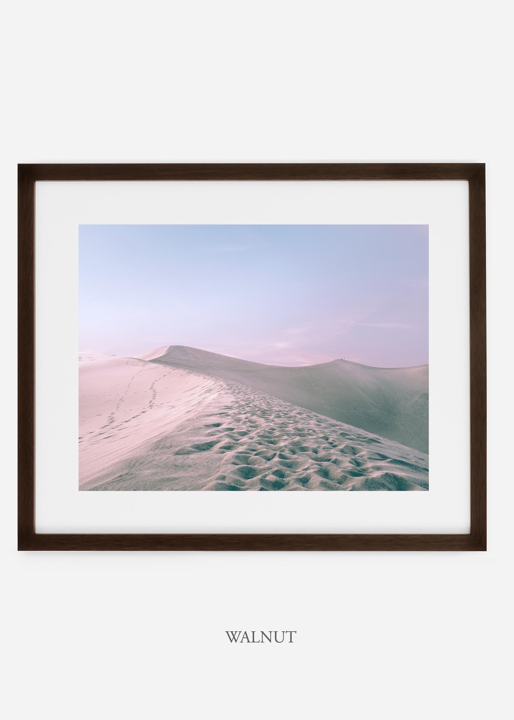 wildercalifornia_walnutframe_deathvalley_16_minimal_cactus_art_interiordesign_blackandwhite.jpg