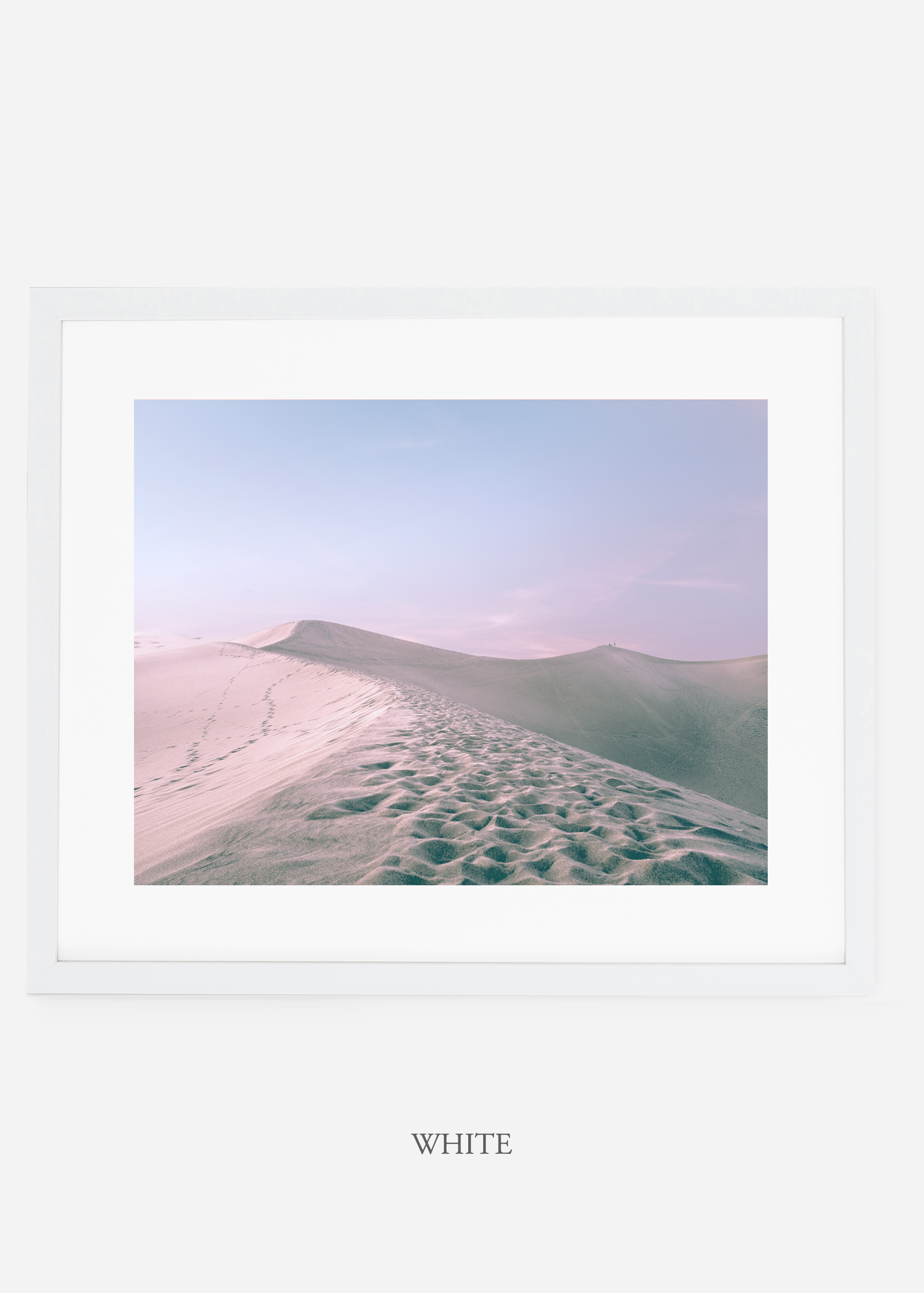 wildercalifornia_whiteframe_deathvalley_16_minimal_cactus_art_interiordesign_.jpg