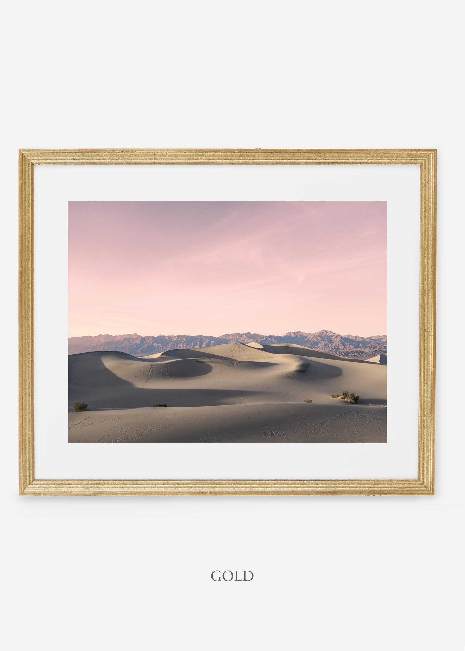 wildercalifornia_goldframe_deathvalley_17_minimal_cactus_art_interiordesign_blackandwhite.jpg
