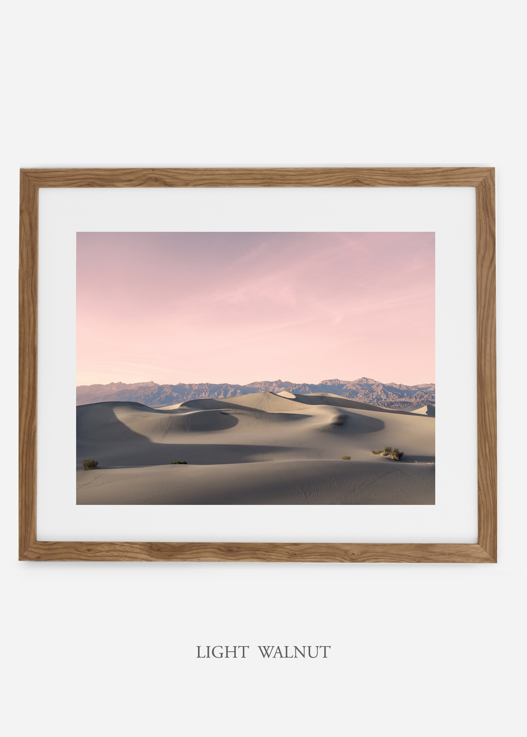 wildercalifornia_lightwalnutframe_deathvalley_17_minimal_cactus_art_interiordesign_blackandwhite.jpg